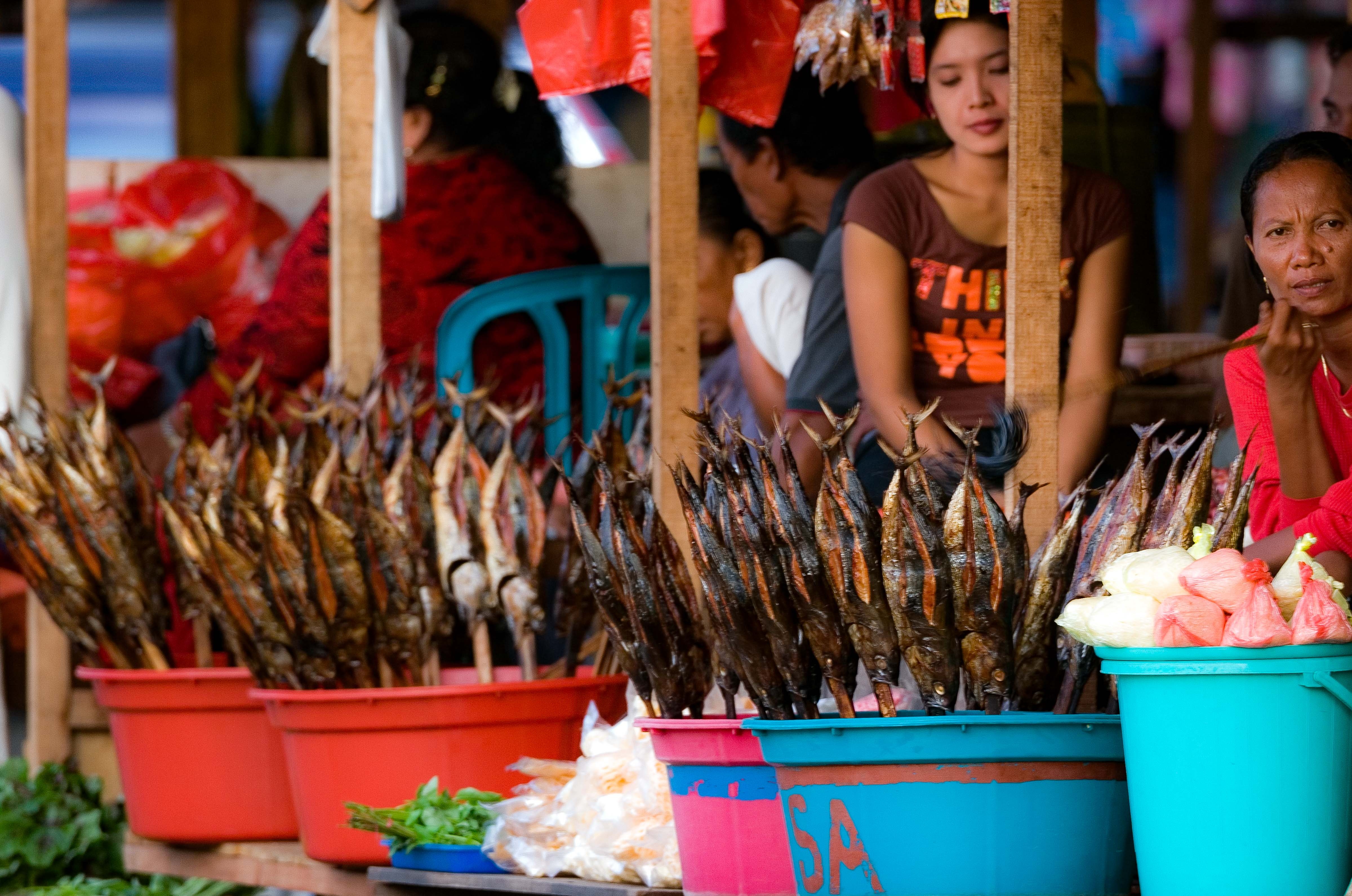 Ambon, Fish On A Stick, 2007