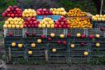 Azerbaijan, Barda Prov, Fruit For Sale, 2009, IMG 9298