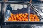 Azerbaijan, Dashkasan Prov, Persimmons In Car, 2009, IMG 9108