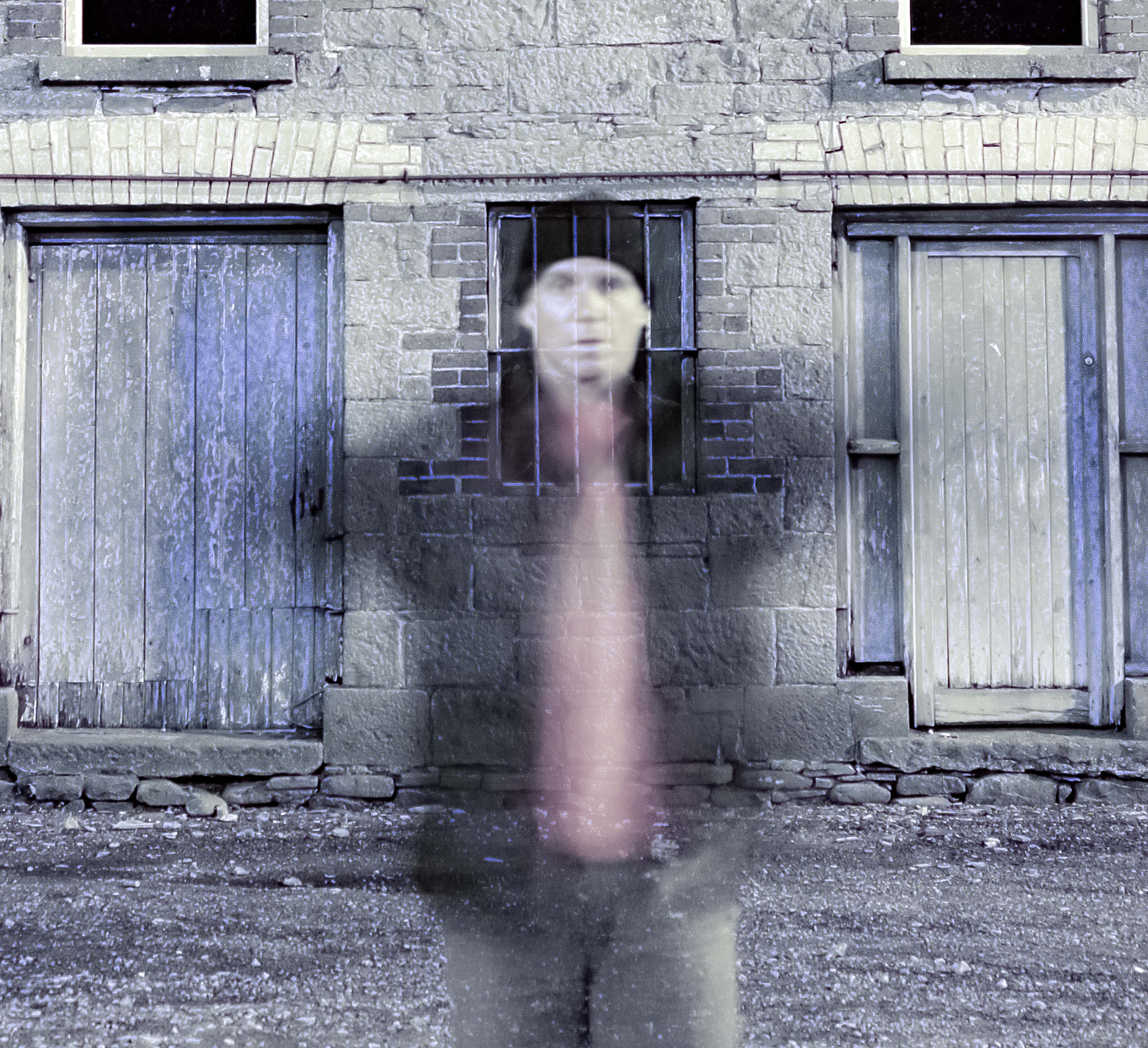 Ireland, Leitrim Province, We Are All Ghosts In Time, 2008, IMG_5528CU1