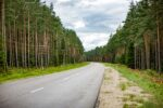 Latvia,VentspilsProv,RoadWithTrees,2010,IMG_2259