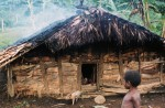 PNG,PigHouse,1983