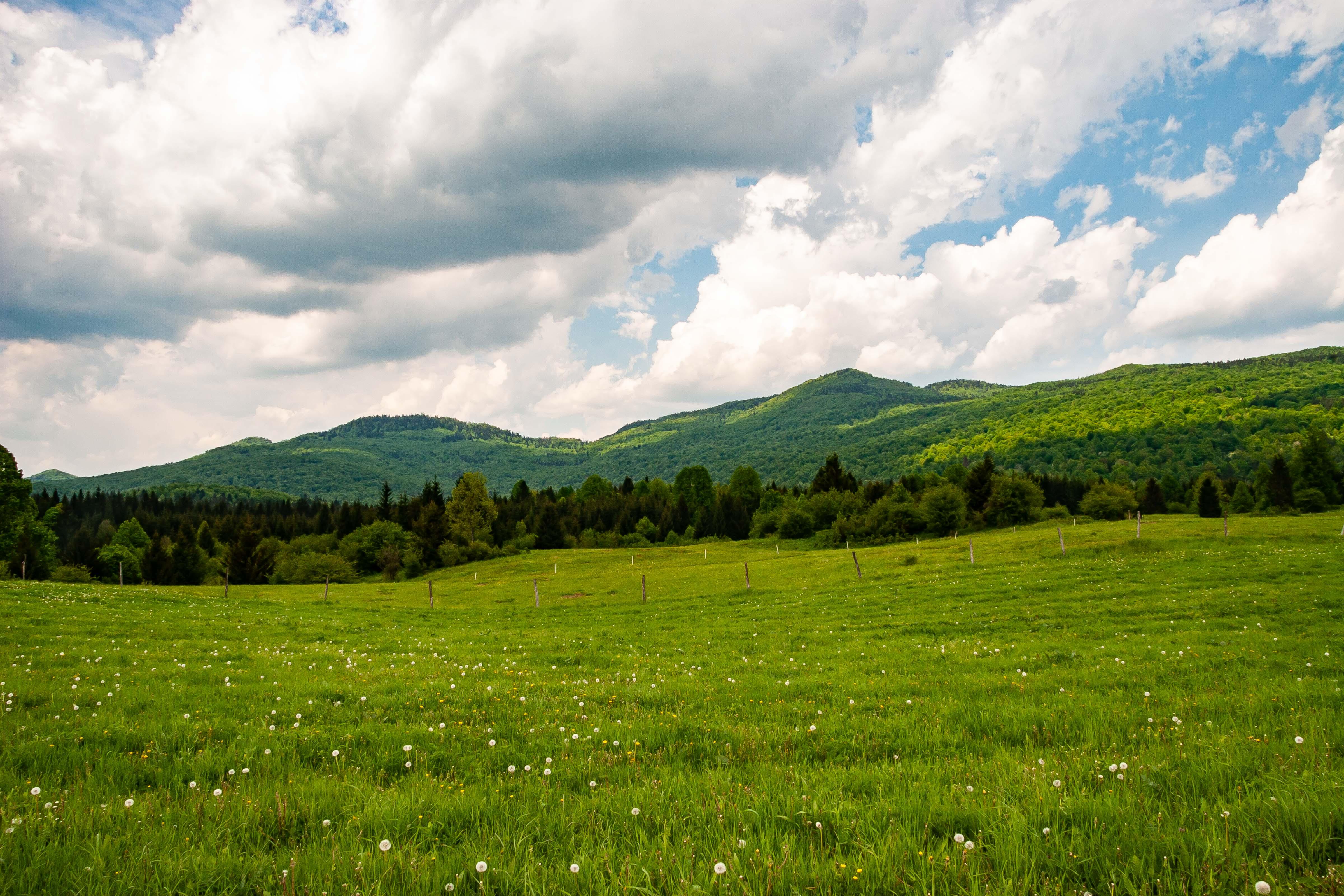 Slovenia, Kocevje Prov, Landscape, 2006, IMG 7281