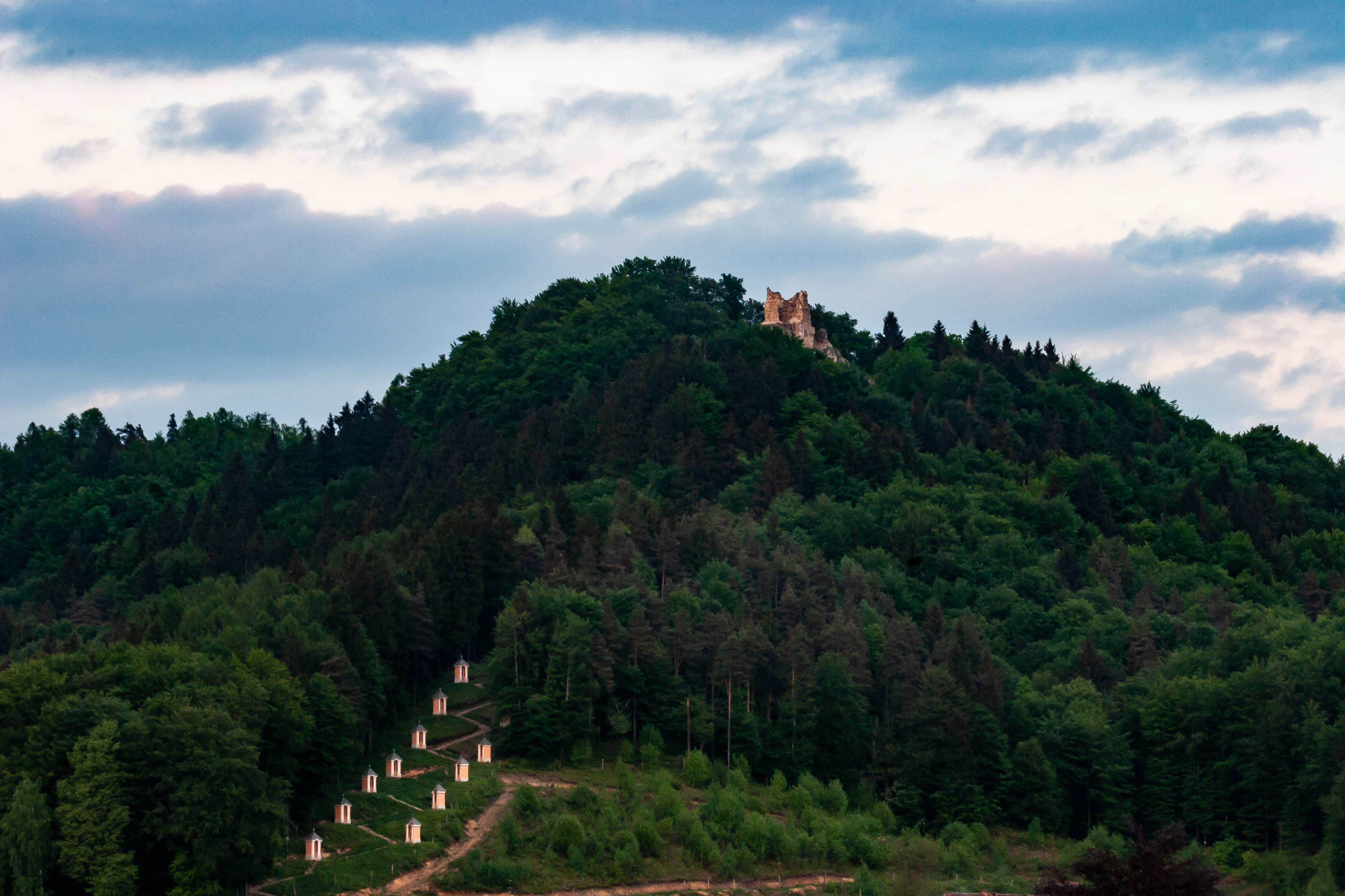 Slovenia, Medvode Prov, Path And Castle, 2006, IMG 5935