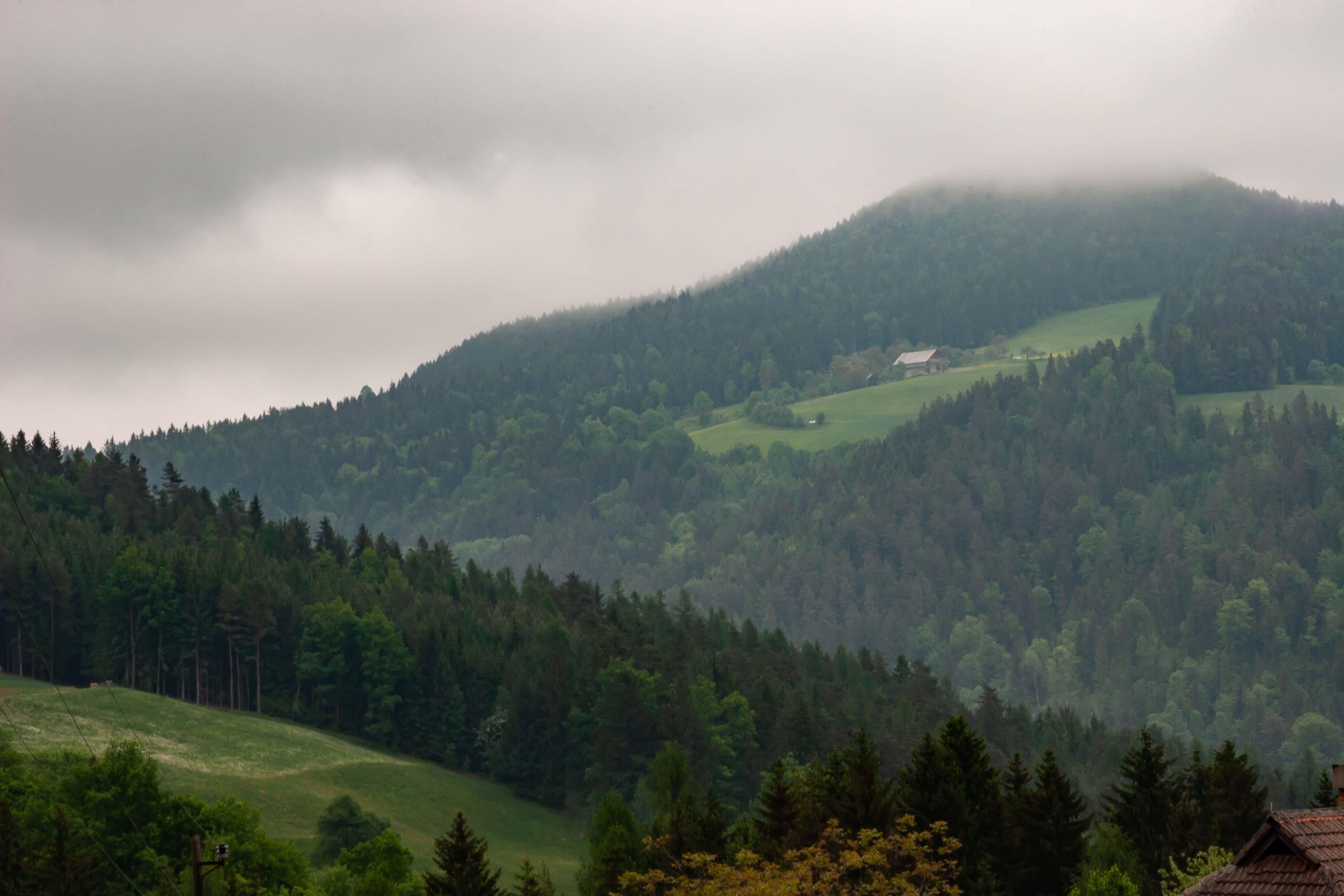 Slovenia, Mezica Prov, Mountainside, 2006, IMG 8454