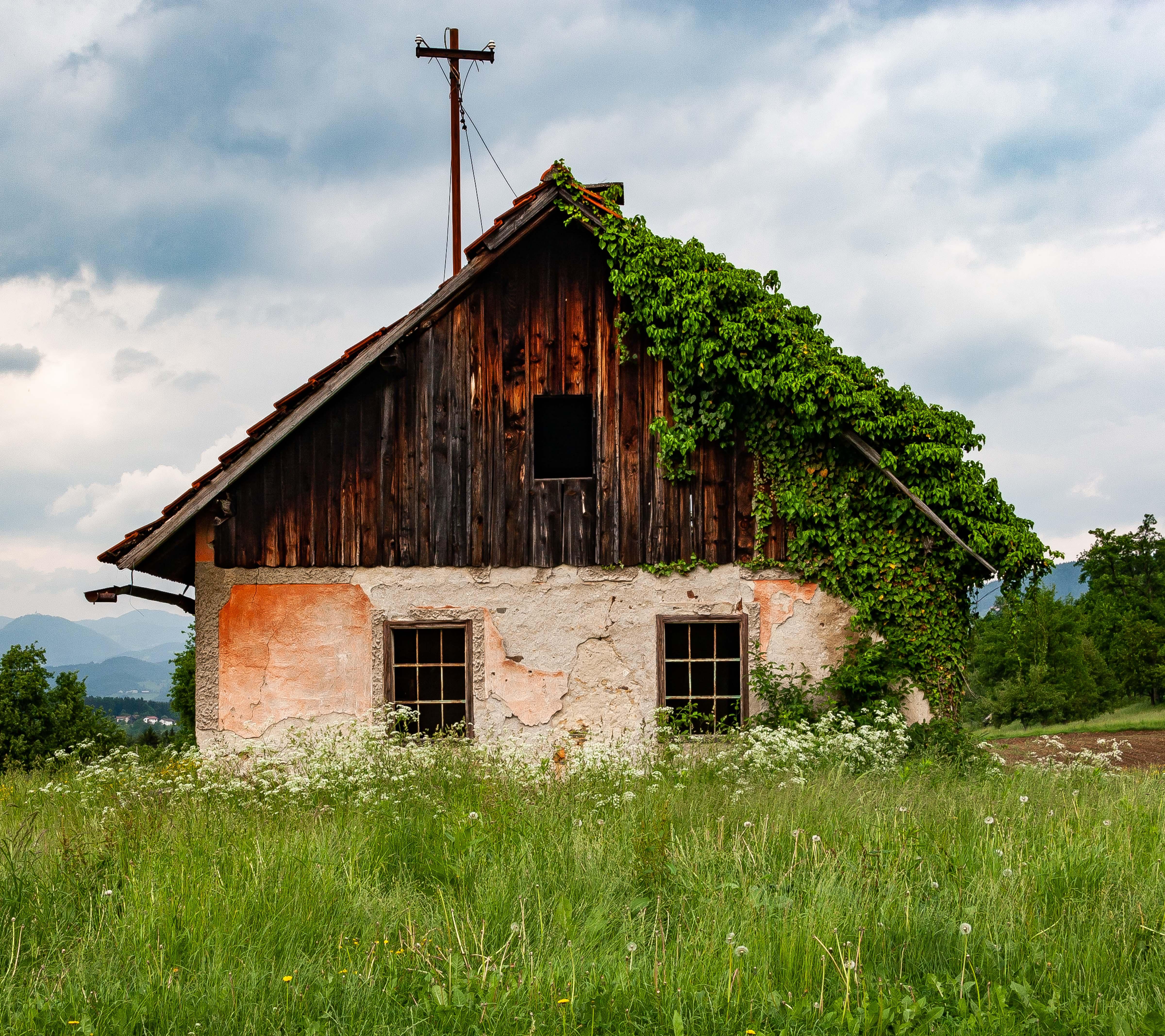 Slovenia, Polzela Prov, Abandoned House, 2006, IMG 8145