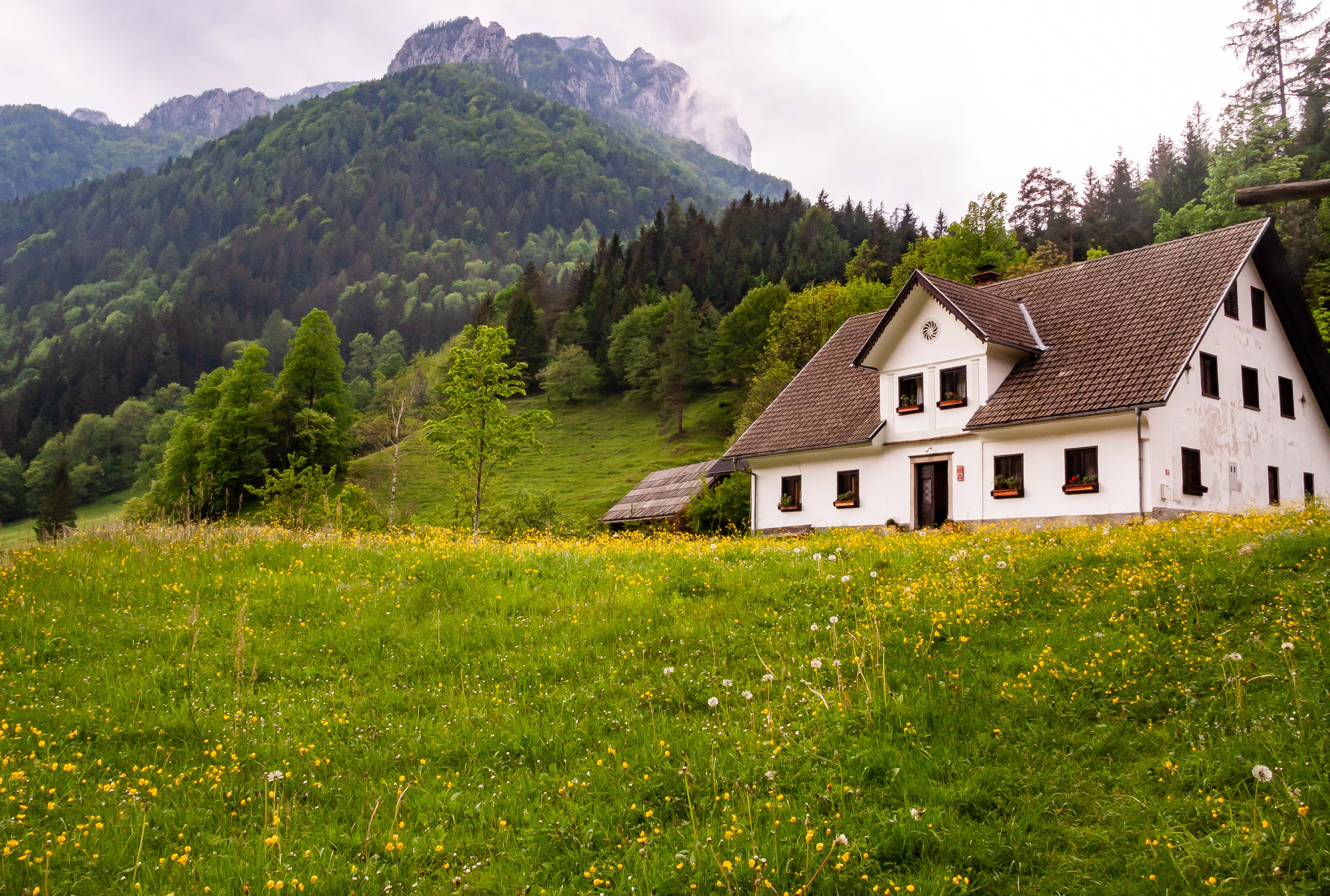 Slovenia, Solcava Prov, House And Mountain, 2006, IMG 8384