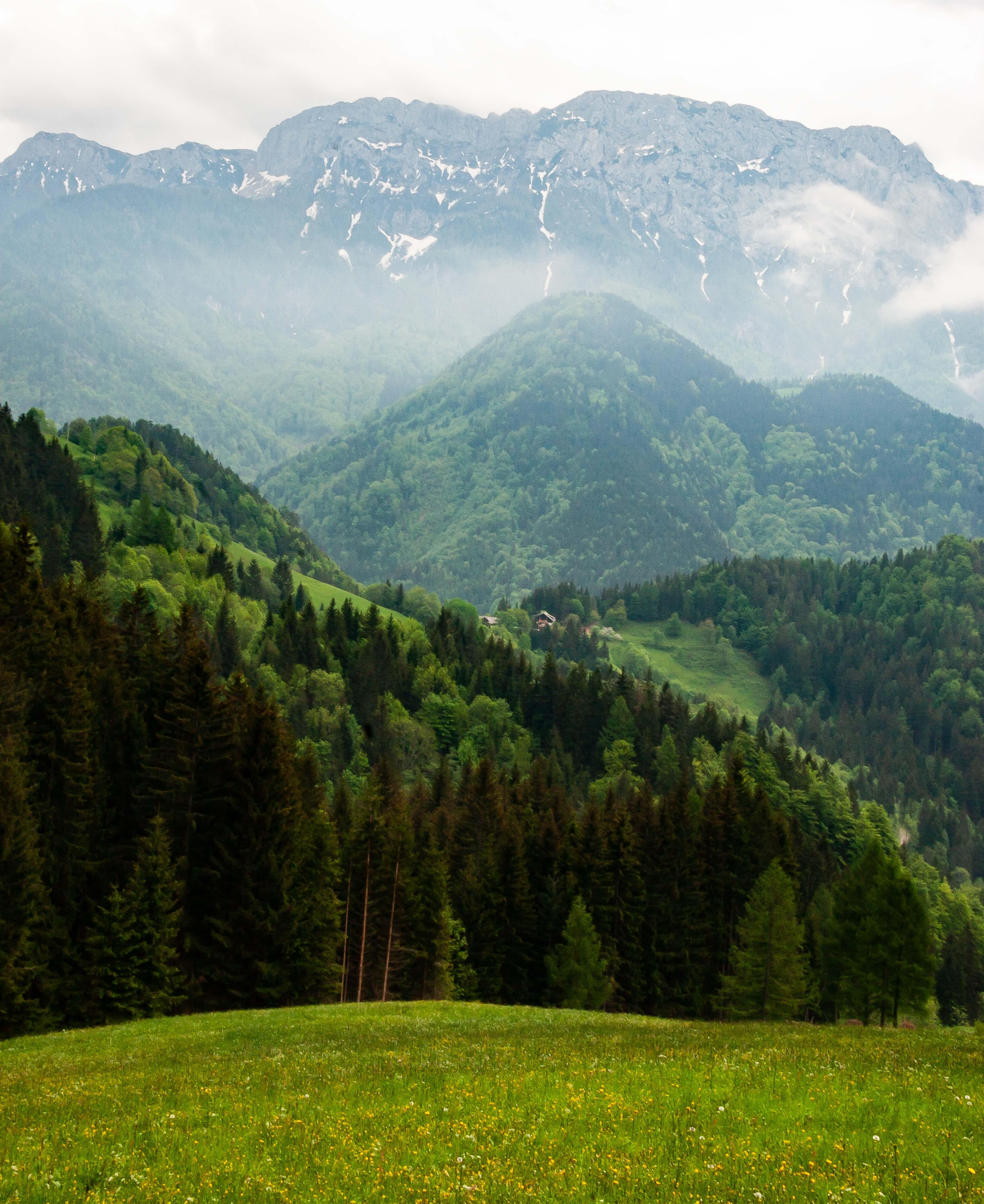 Slovenia, Solcava Prov, Mountain Landscape, 2006, IMG 8414