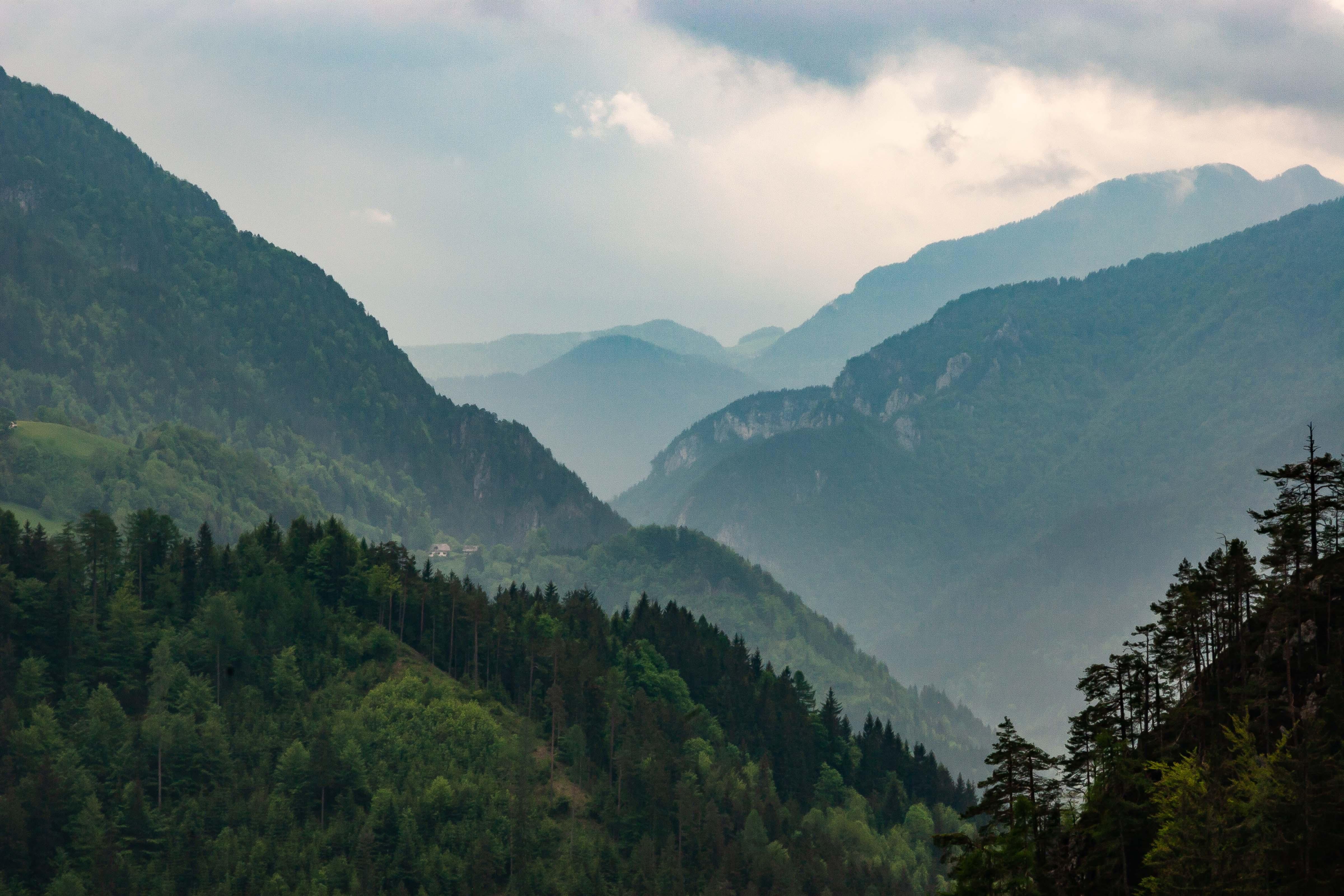 Slovenia, Solcava Prov, Mountain Landscape, 2006, IMG 8417
