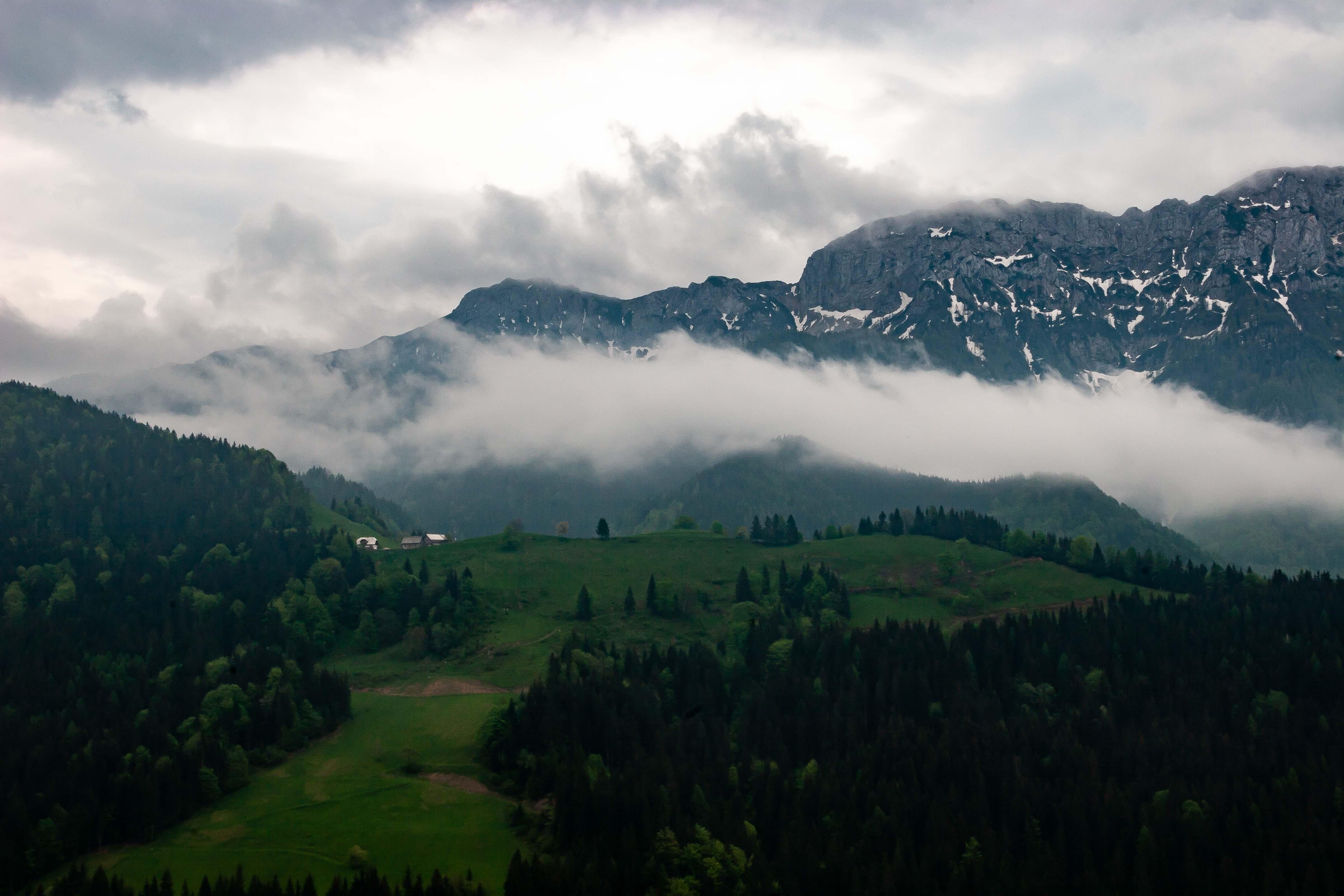 Slovenia, Solcava Prov, Mountain Scene, 2006, IMG 8423