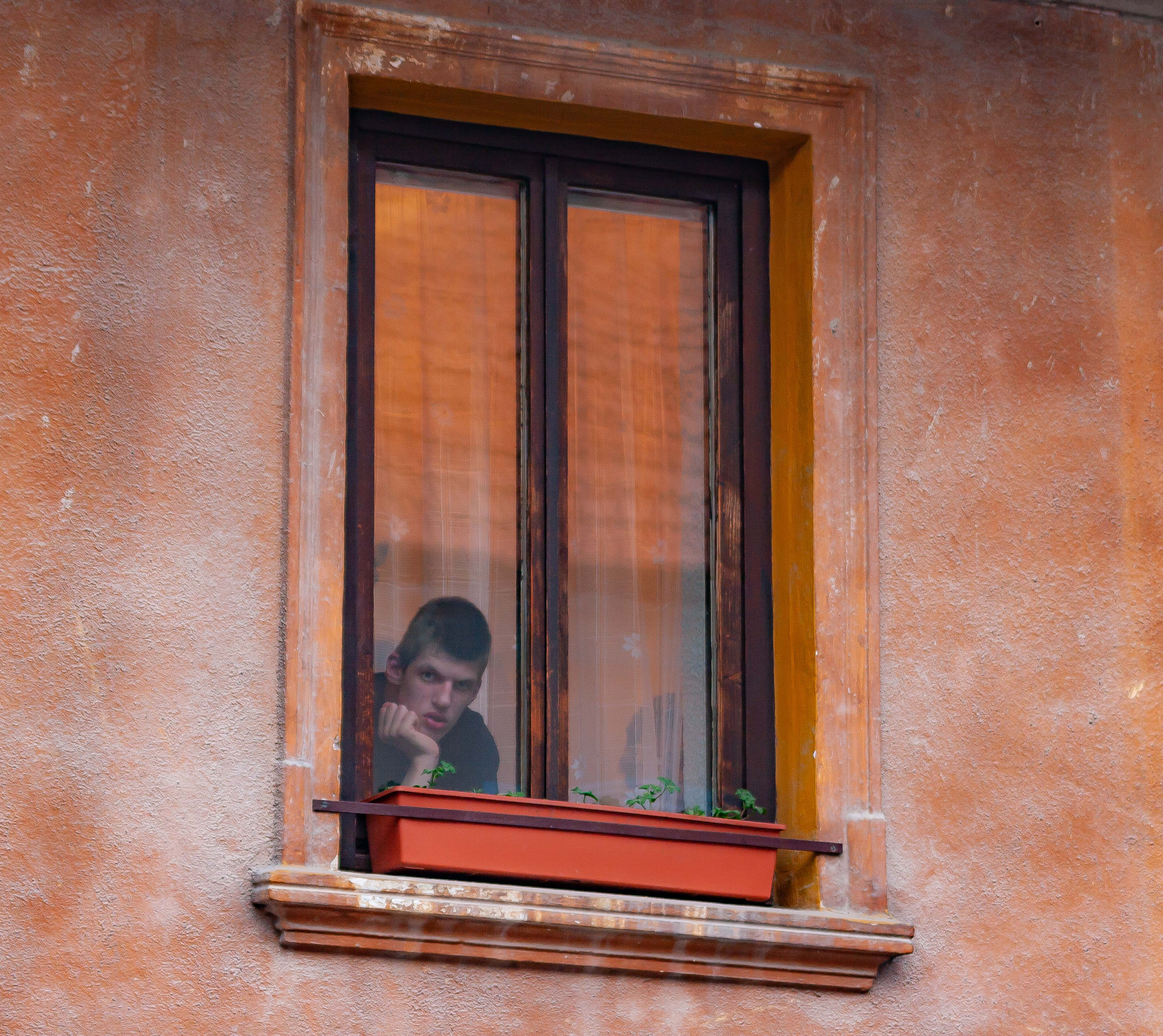 Slovenia, Vitanje Prov, Boy In Window, 2006, IMG 5680