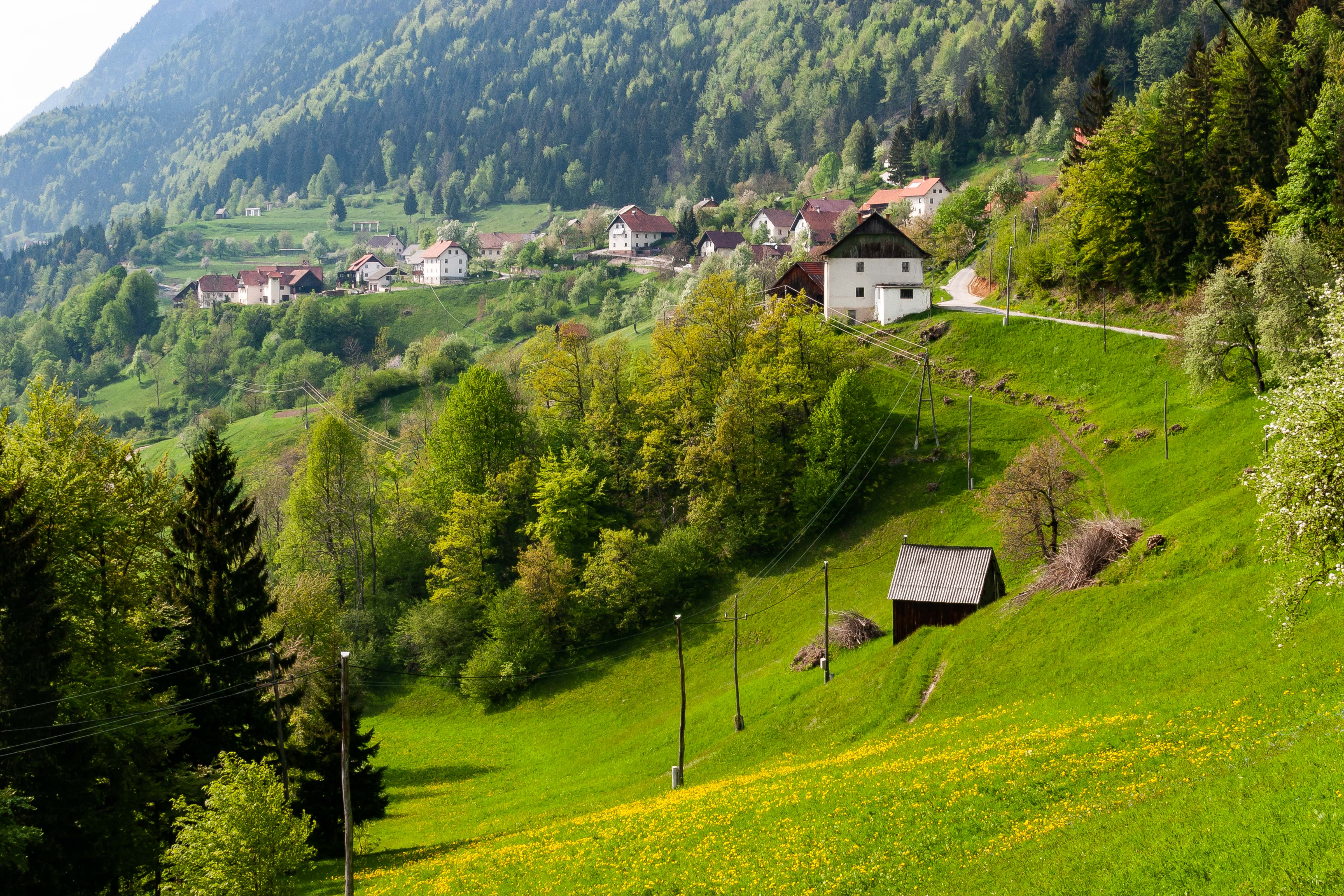 Slovenia, Zelezniki Prov, Village, 2006, IMG 6294