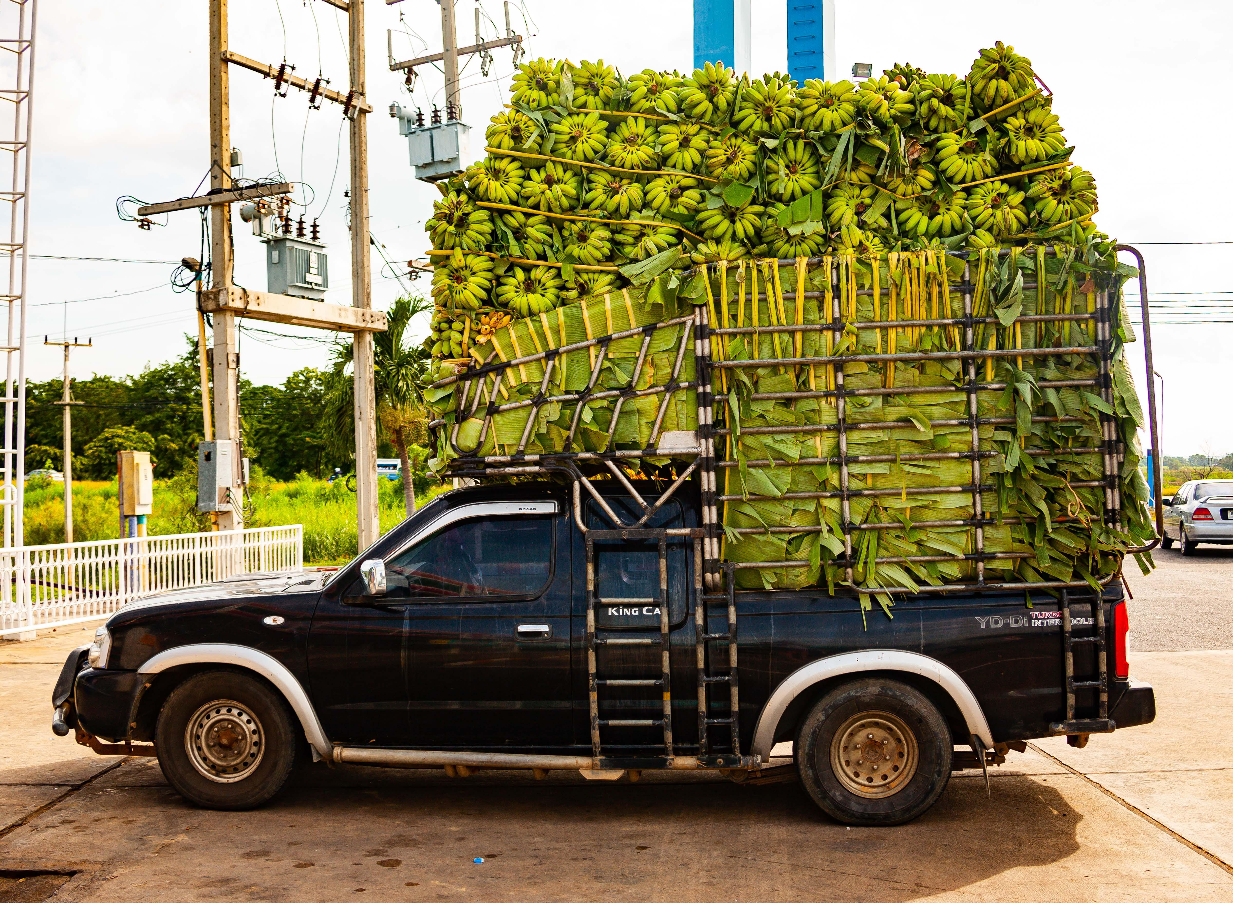 Thailand, Nakhon Sawan Prov, Banana Truck, 2008, IMG 3309
