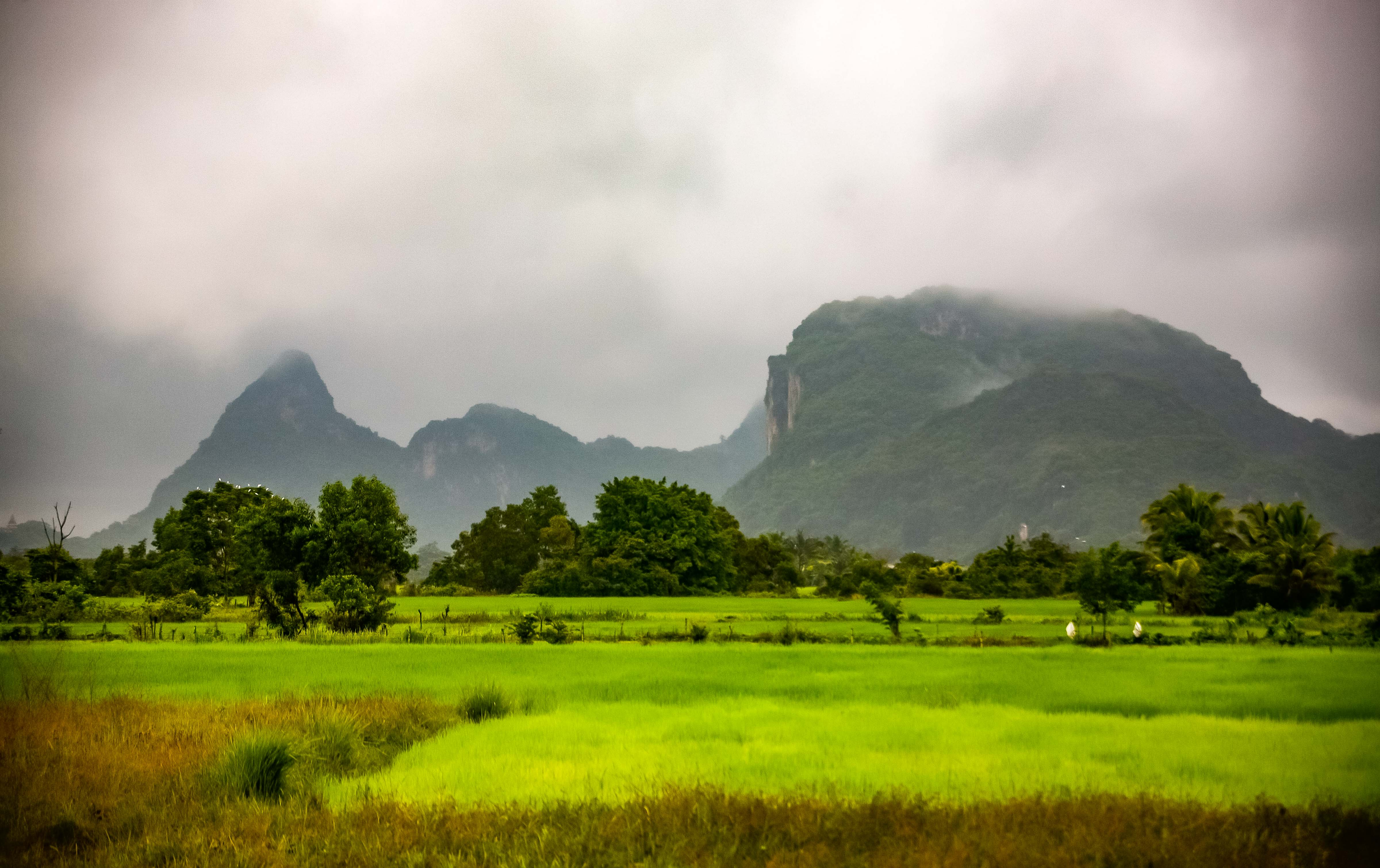 Thailand, Phatthalung Prov, Cloudy Landscape, 2008, IMG 1558