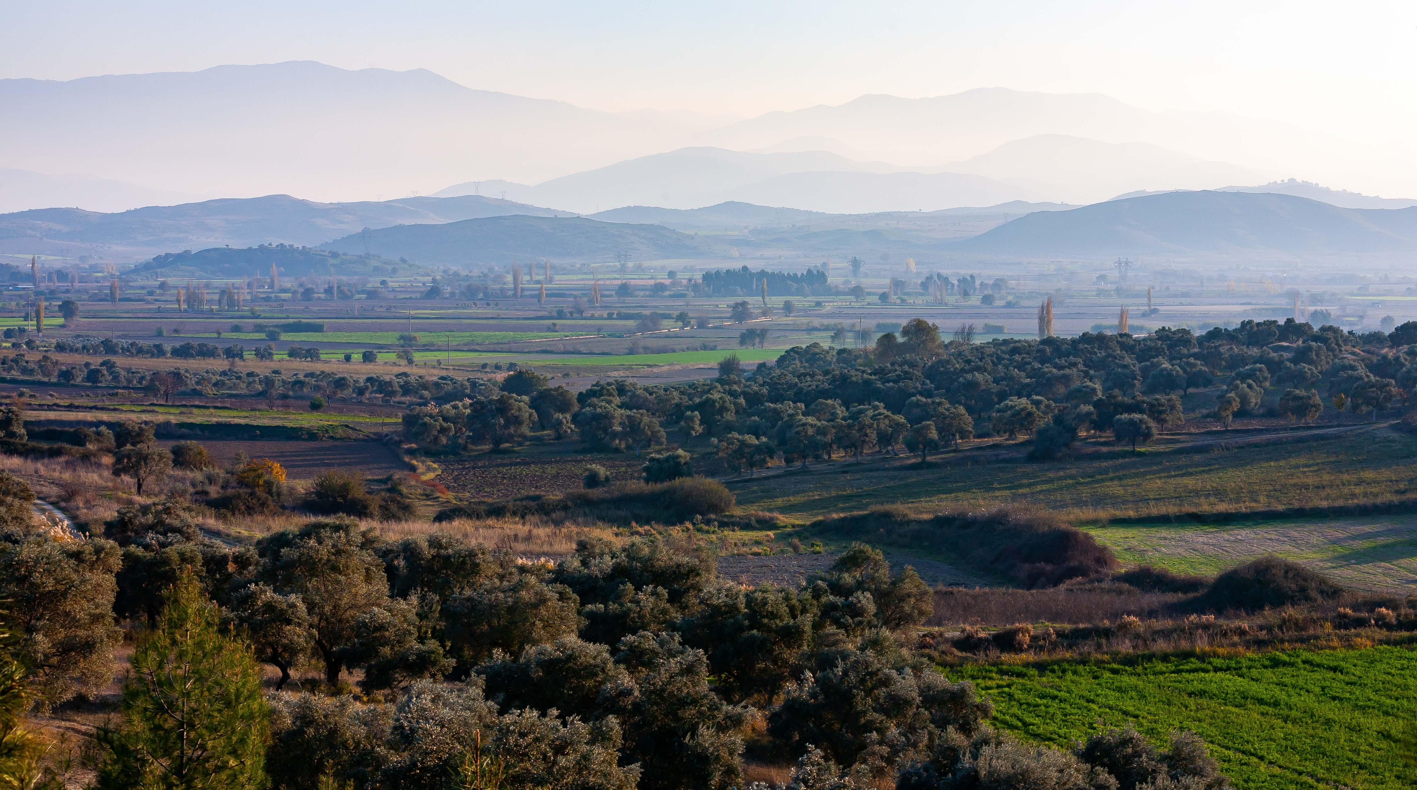 Turkey, Aydin Prov, Landscape, 2009, IMG 0432