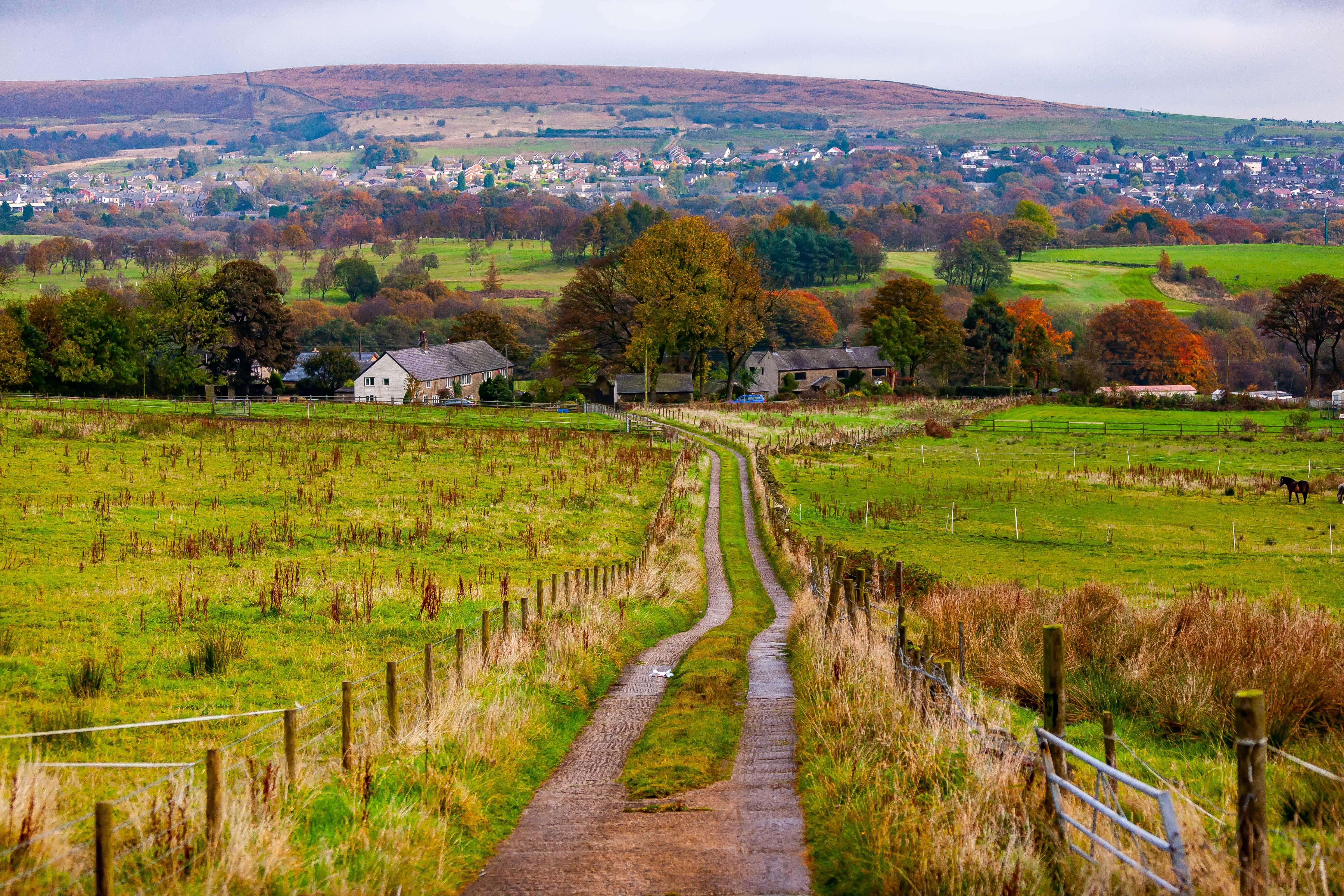 UK, Blackburn With Darwen Prov, Country Lane, 2009, IMG 6709