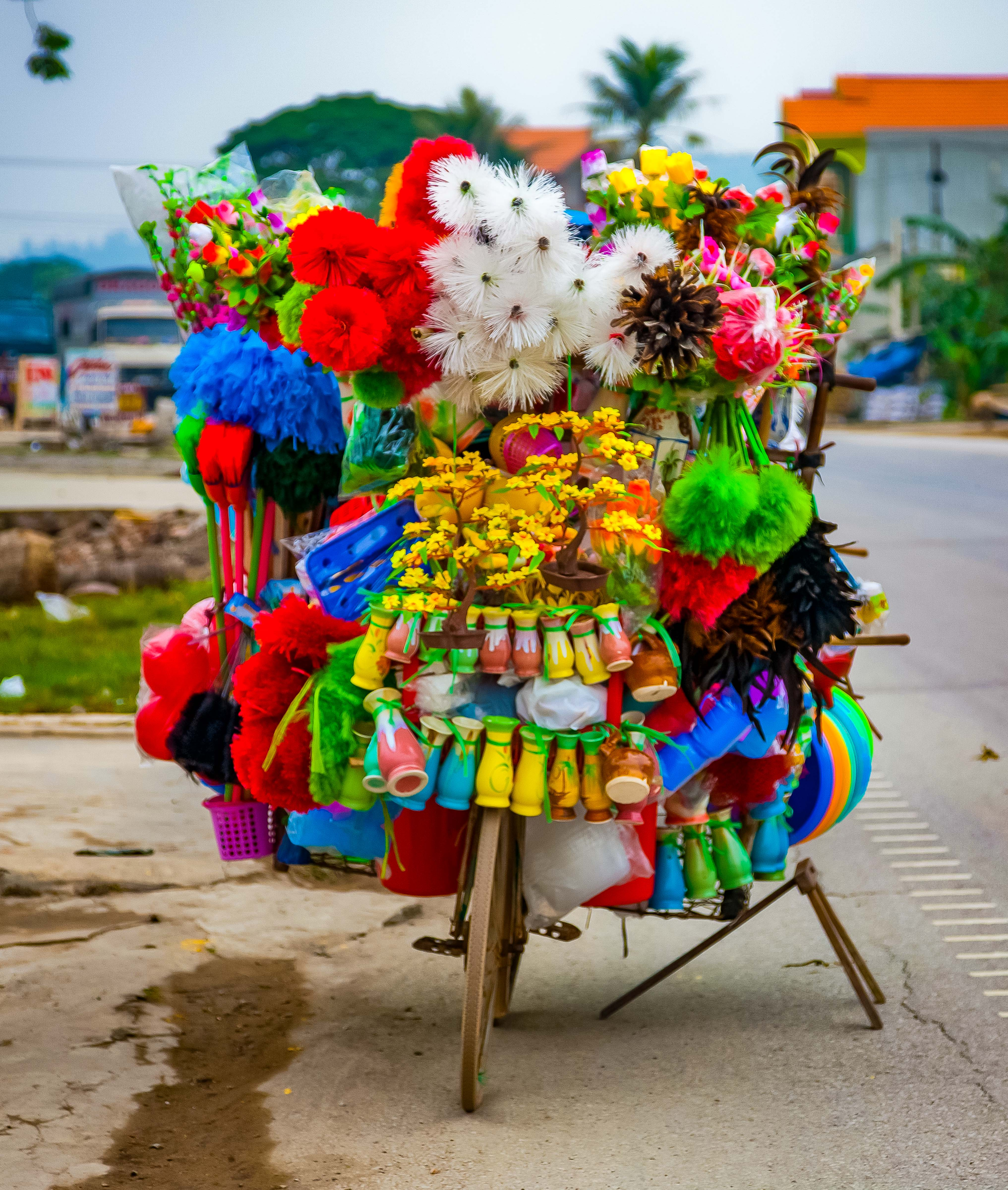 Vietnam, ThanhHoa Prov, Street Vendor Bike, 2010, img_3315