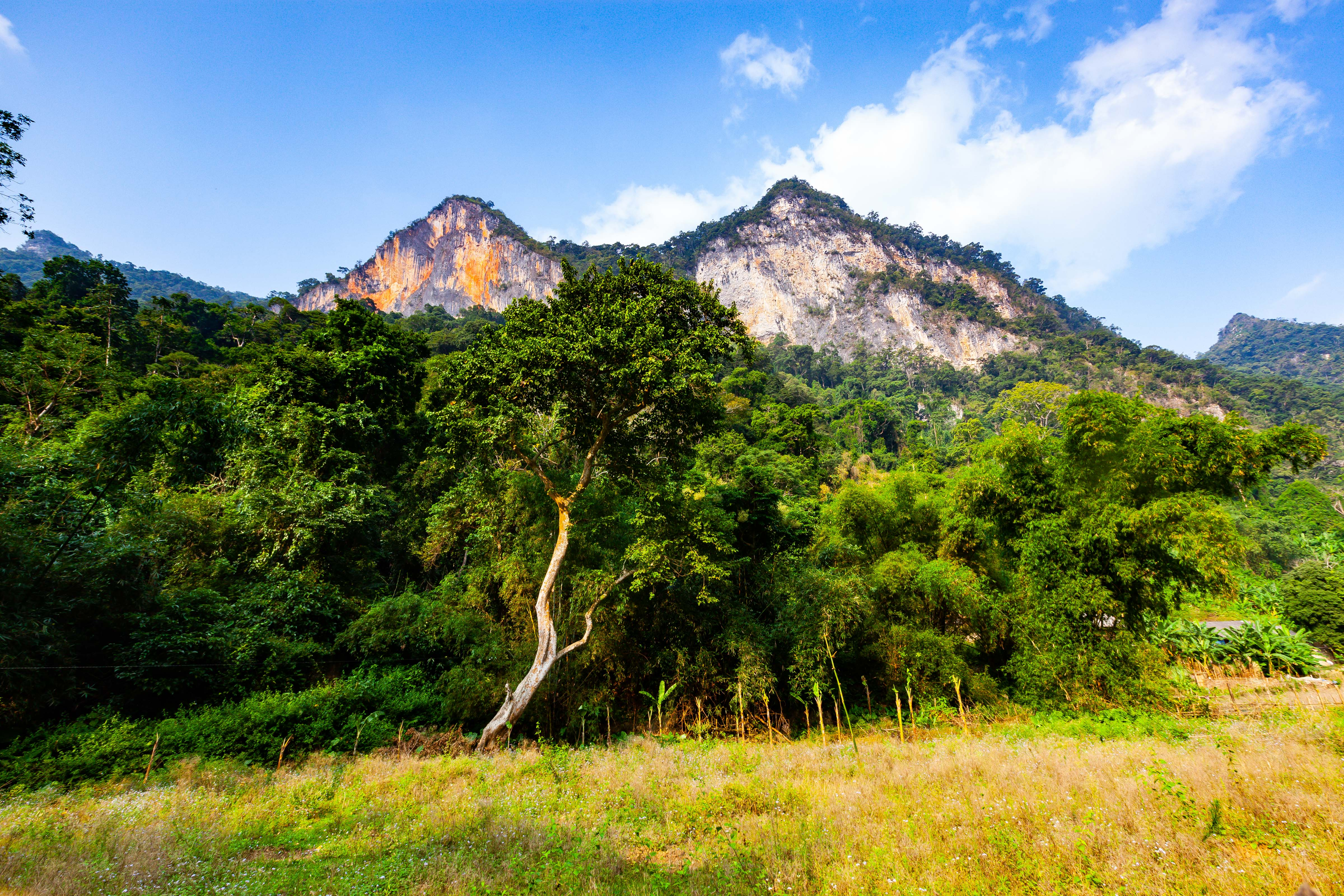 Vietnam, Bac Can Prov, Outcrops, 2011, IMG 0492