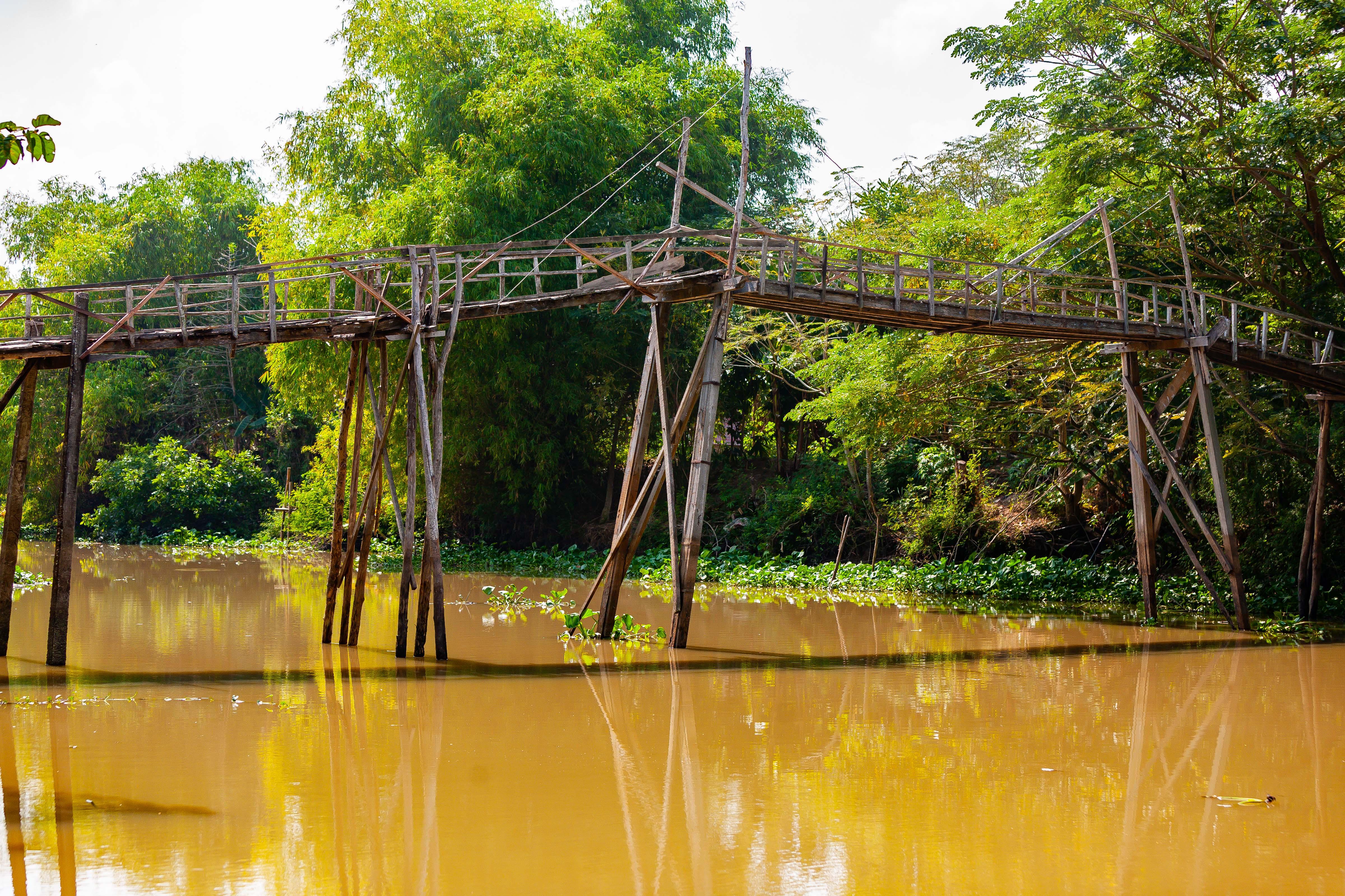 Vietnam, Dong Thap Prov, Rickety Foot Bridge, 2010, IMG 1952