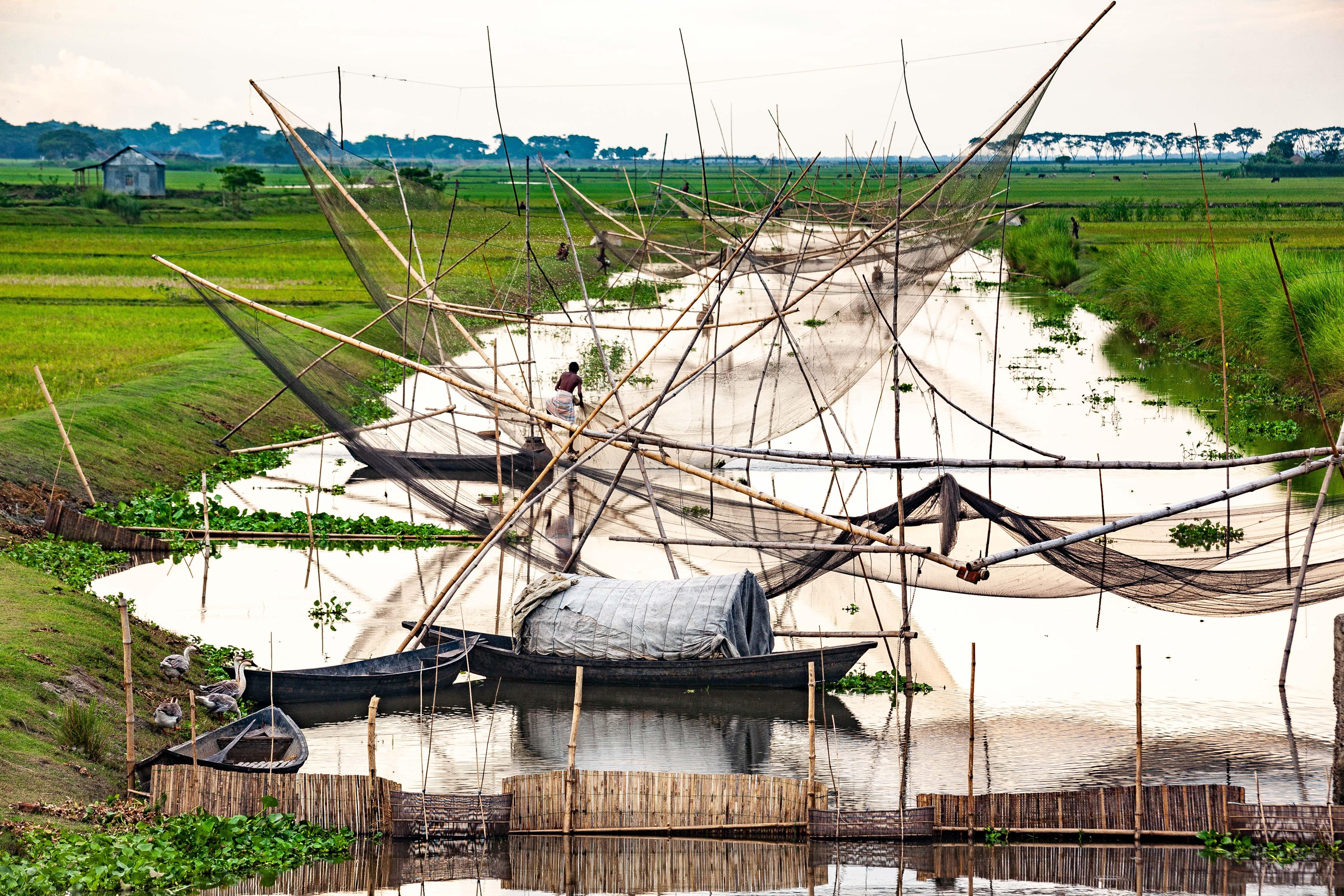 Bangladesh, Brahmanbaria Prov, Fish Nets, 2009, IMG 8530