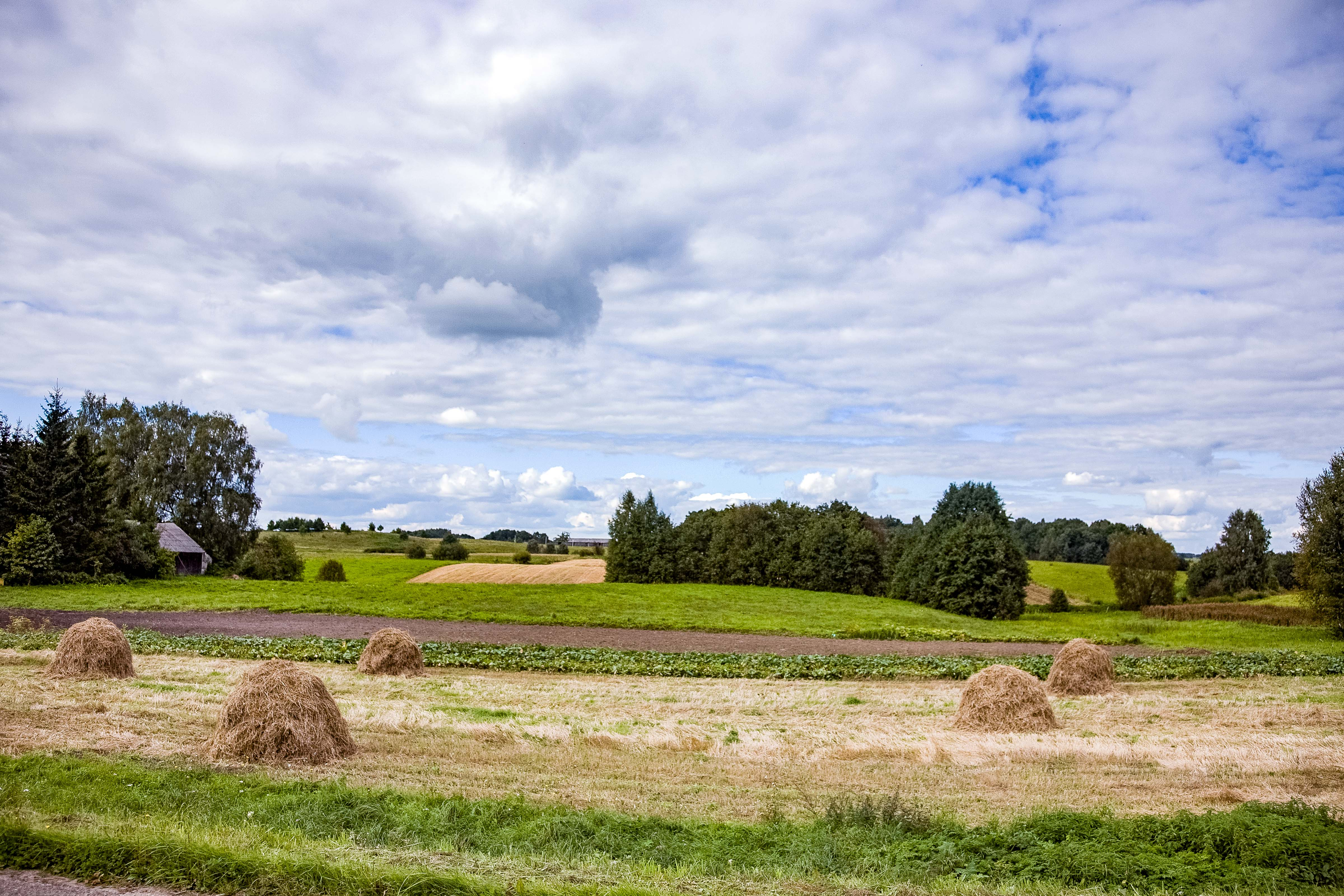 Lithuania, Taurages Prov, Landscape, 2010, IMG_2916