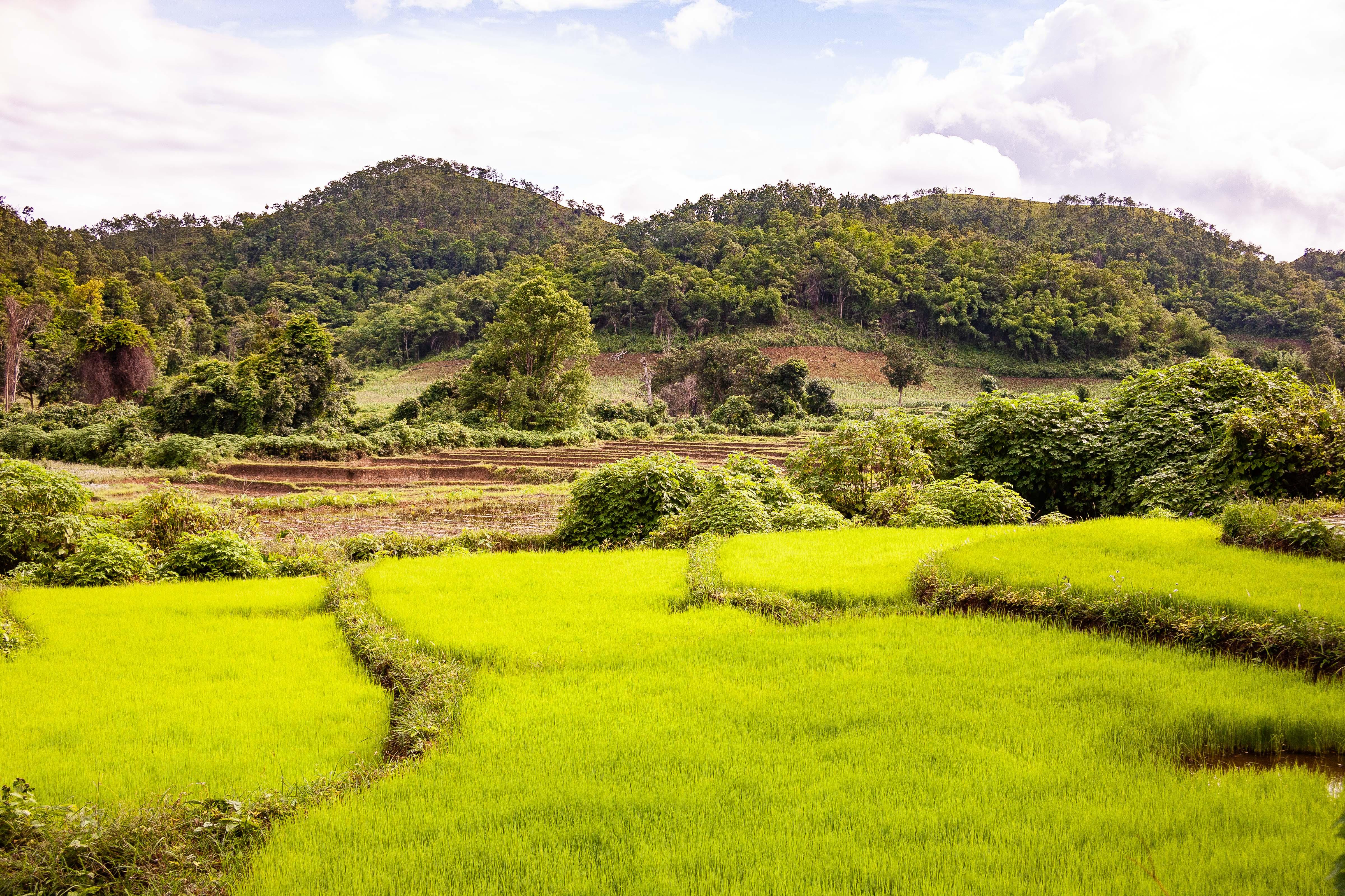 Myanmar, Shan Prov, Landscape, 2009, IMG 4441