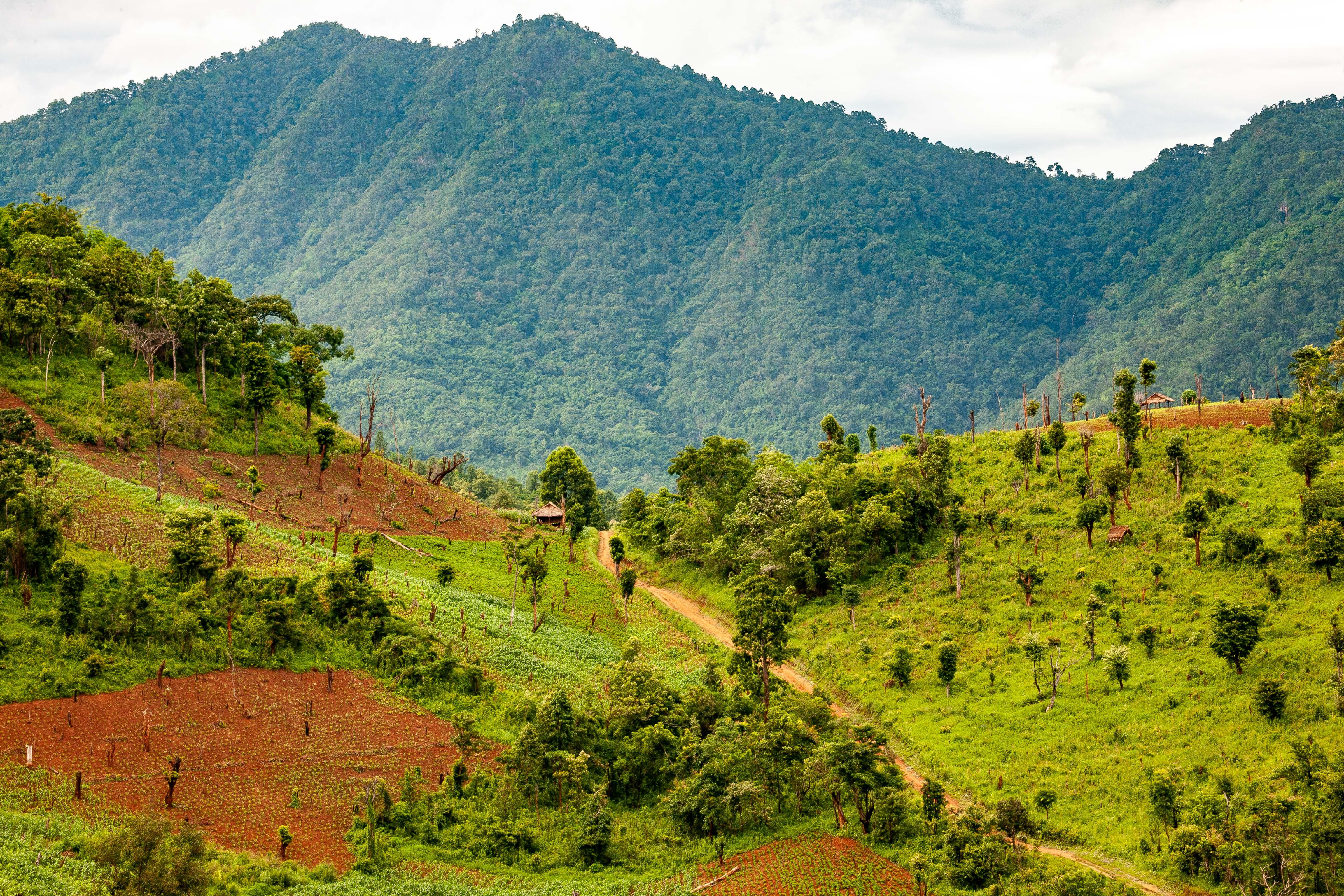 Myanmar, Shan Prov, Mountain Range, 2009, IMG 4240