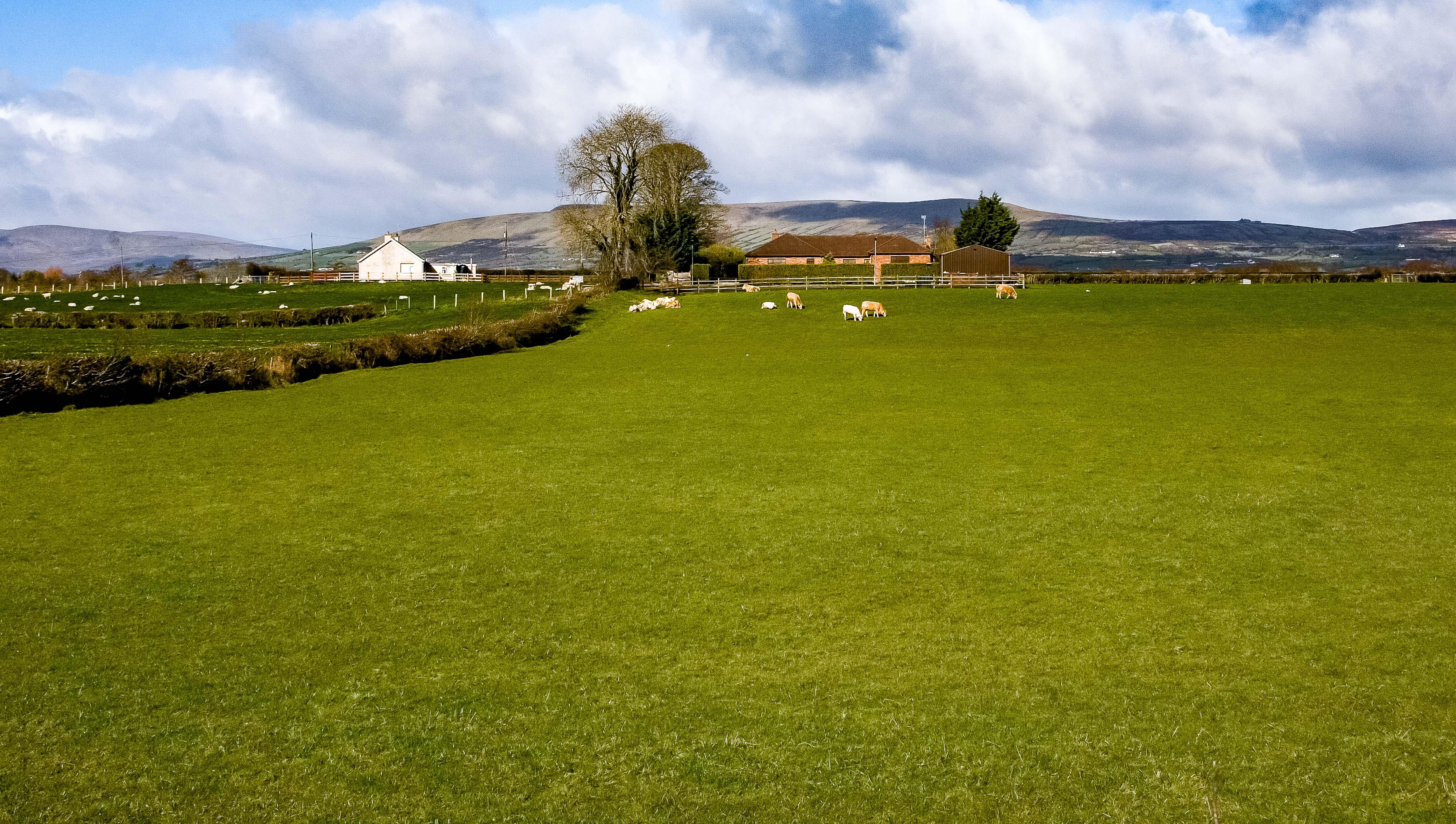 N Ireland, Limavady Prov, Farmstead, 2009, IMG 0194