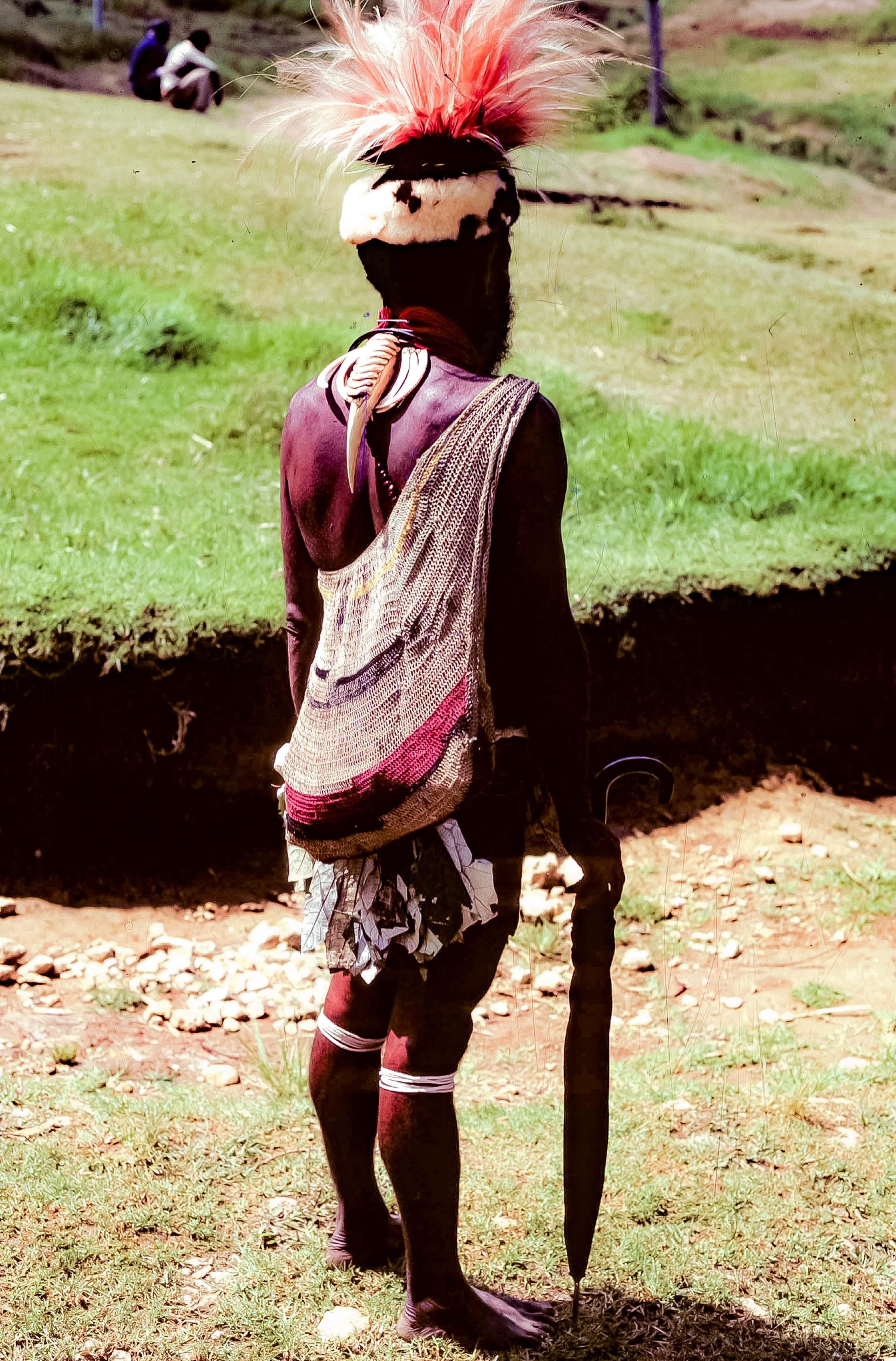 Papua New Guinea, Dapper Wigman Back, 1983