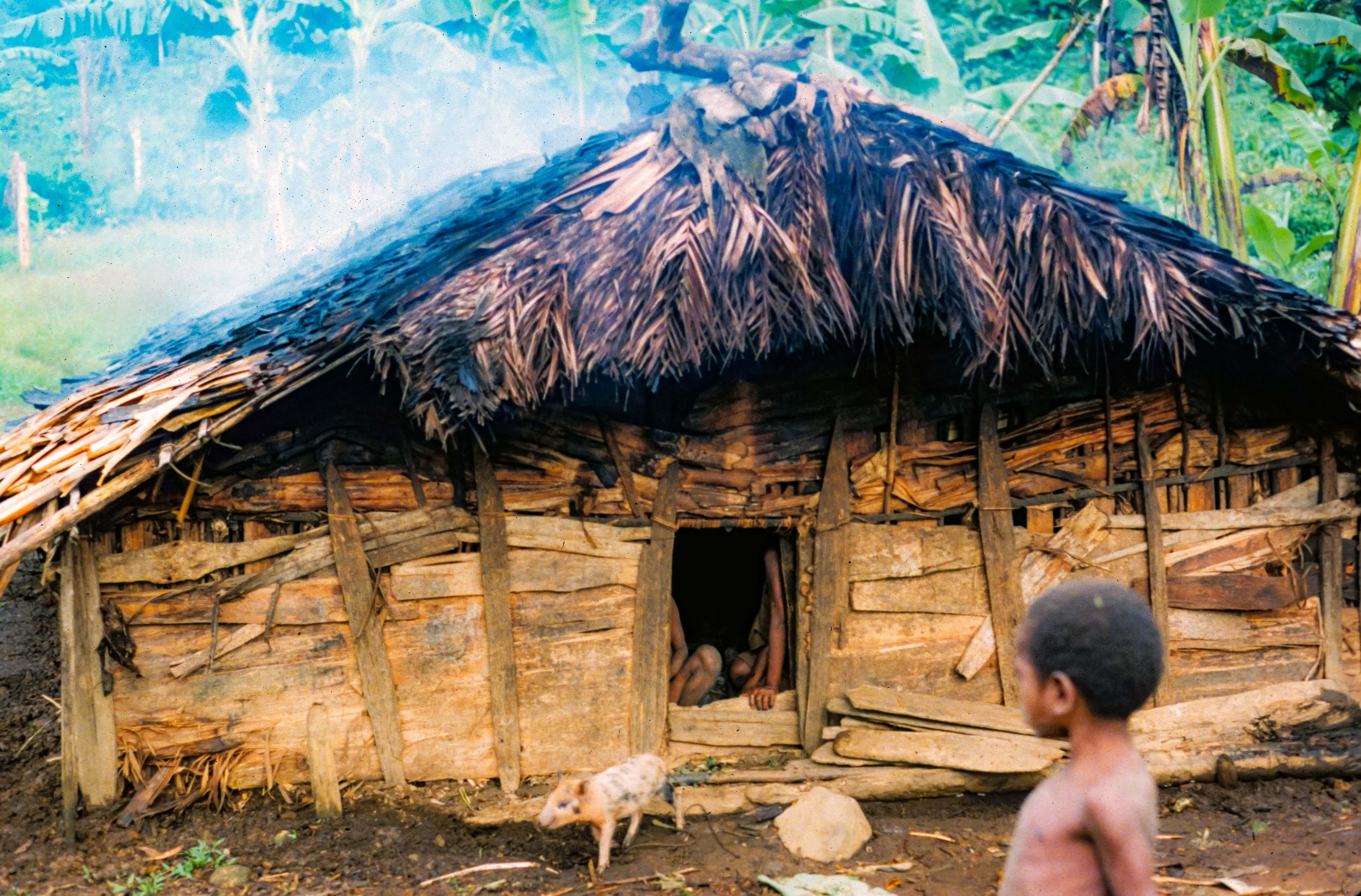 Papua New Guinea, Pig House, 1983