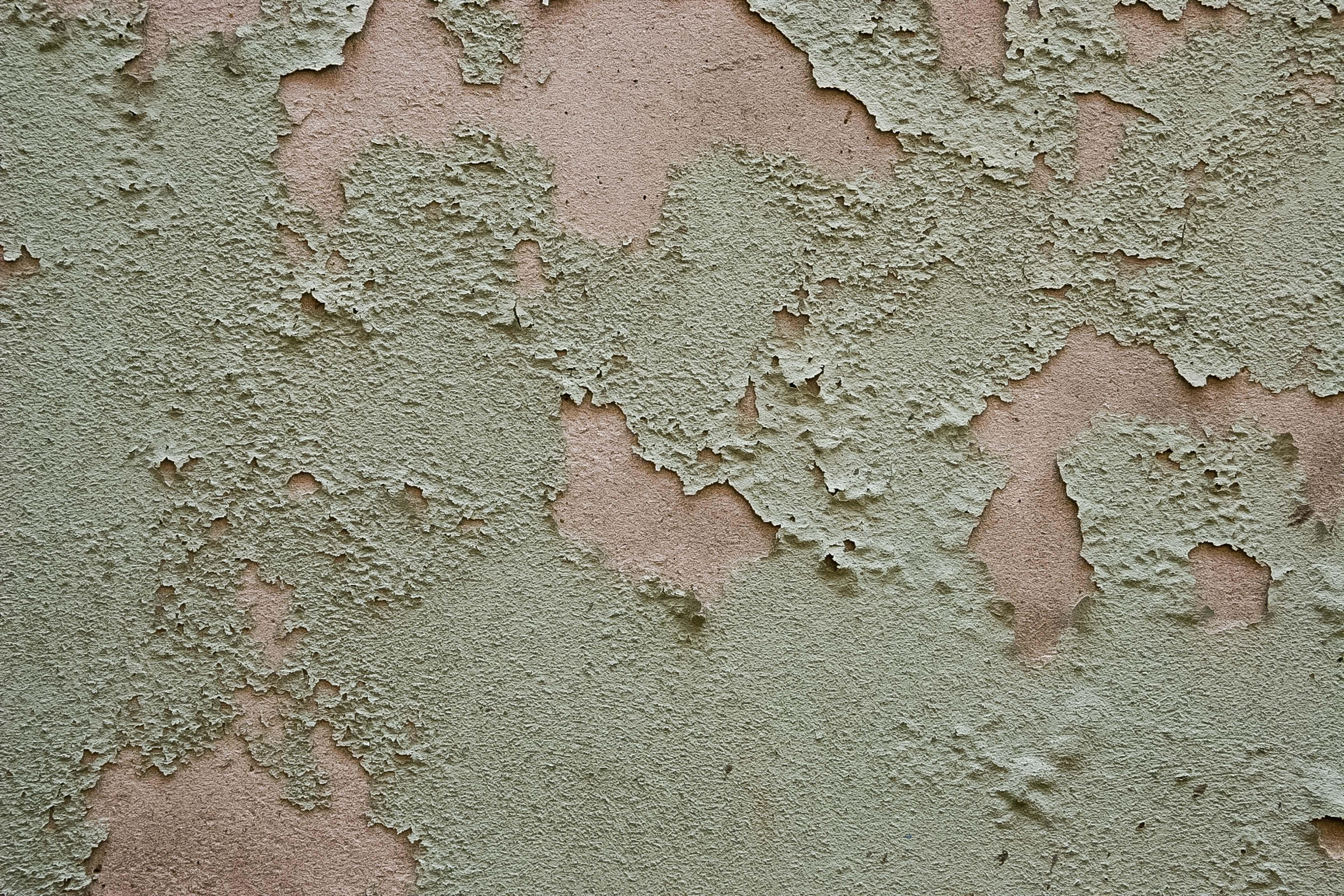 Slovenia, Koper Prov, Peeling Paint, 2006, IMG 7010