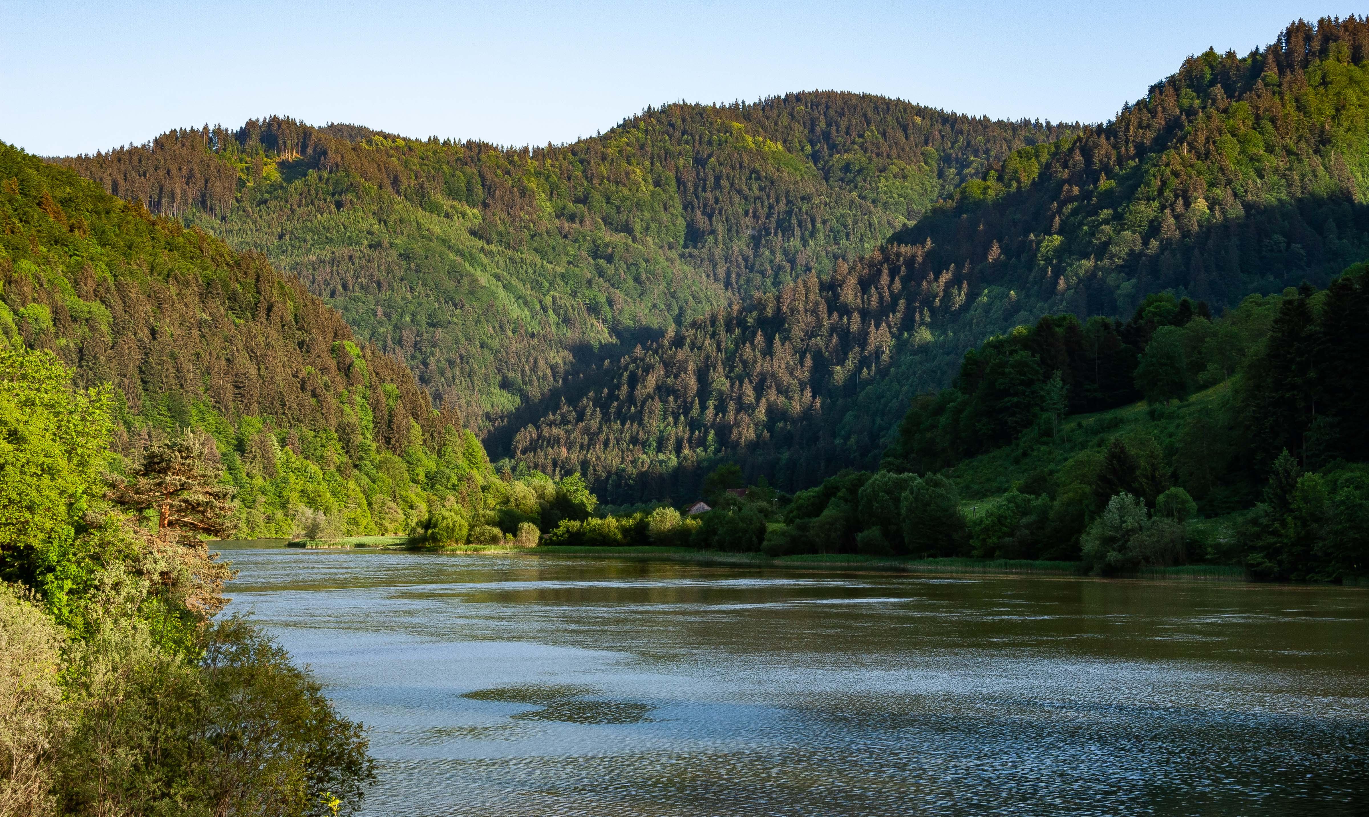 Slovenia, Radlje Ob Dravi Prov, River, 2006, IMG 8686