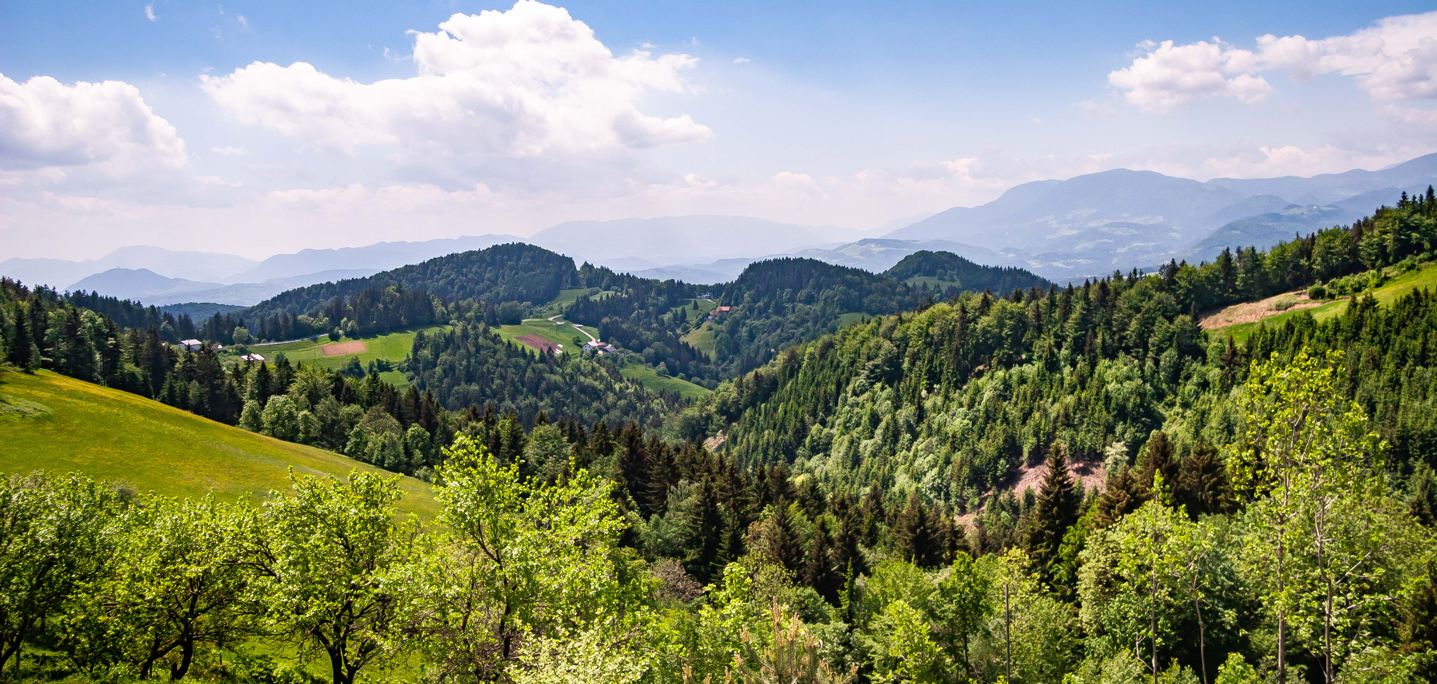Slovenia, Slovenj Gradec Prov, Landscape, 2006, IMG 8551