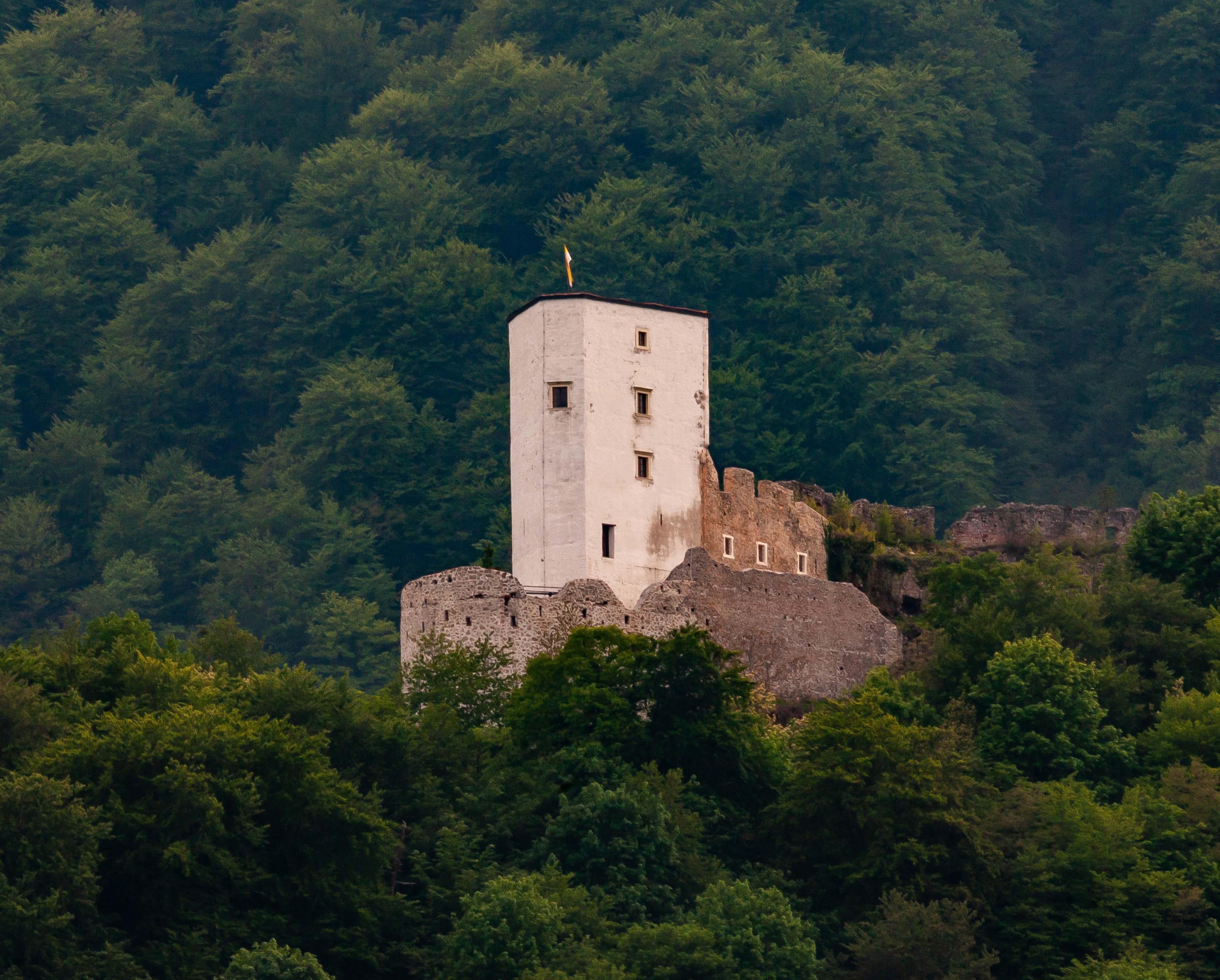 Slovenia, Slovenske Konjice Prov, Castle, 2006, IMG 5658