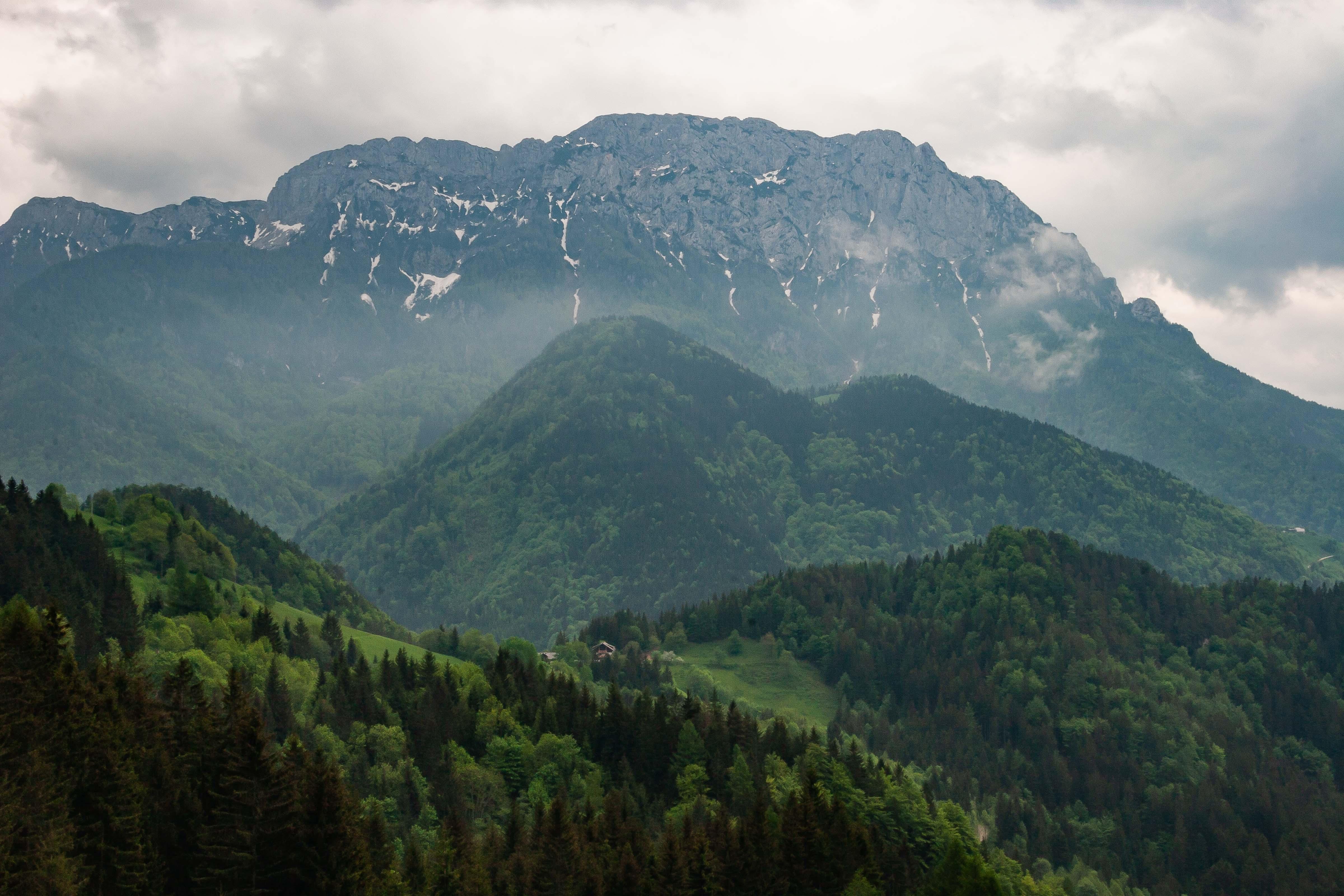 Slovenia, Solcava Prov, Mountain Landscape, 2006, IMG 8410