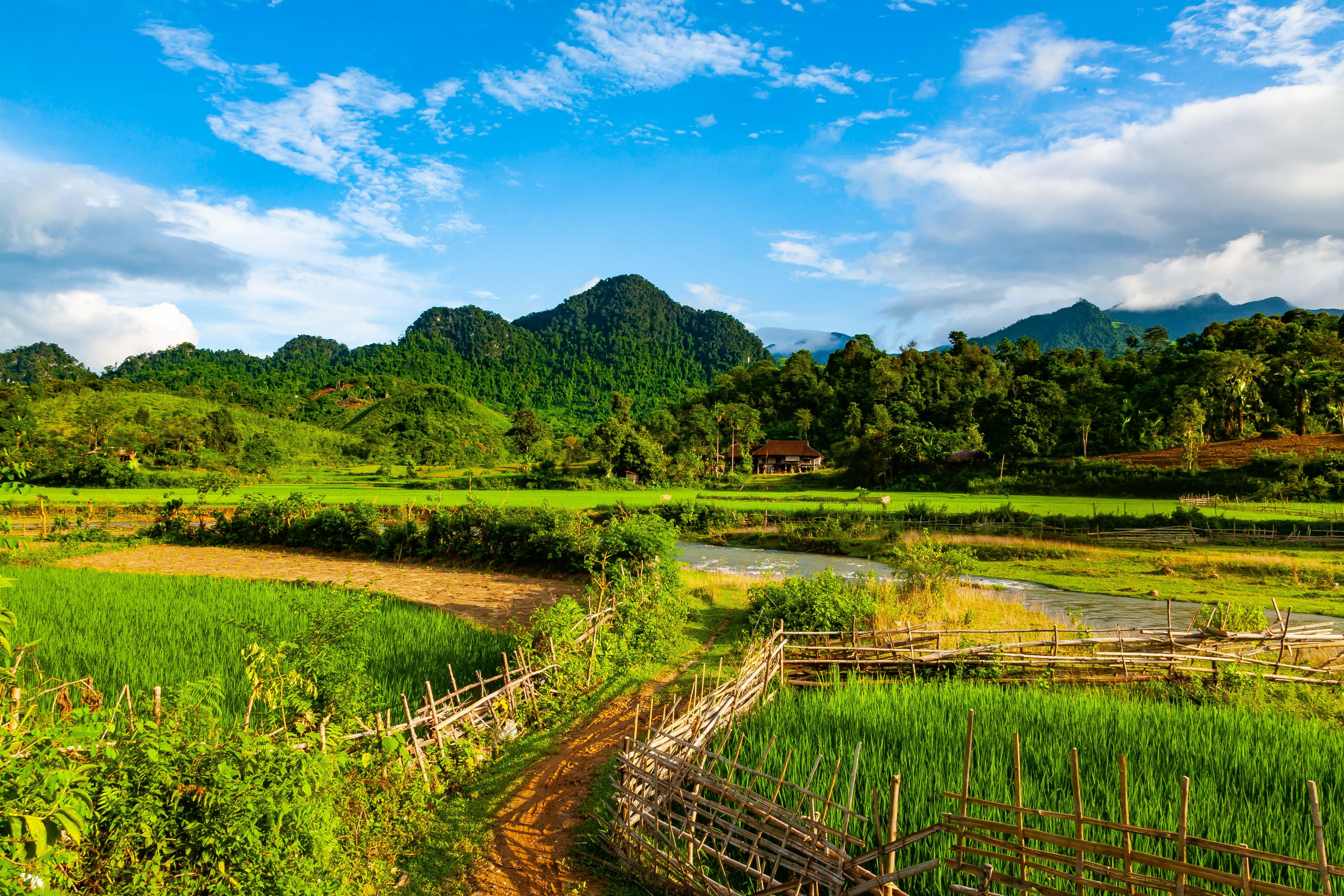 Vietnam, Lao Cai Prov, Path To House, 2008, IMG 8715